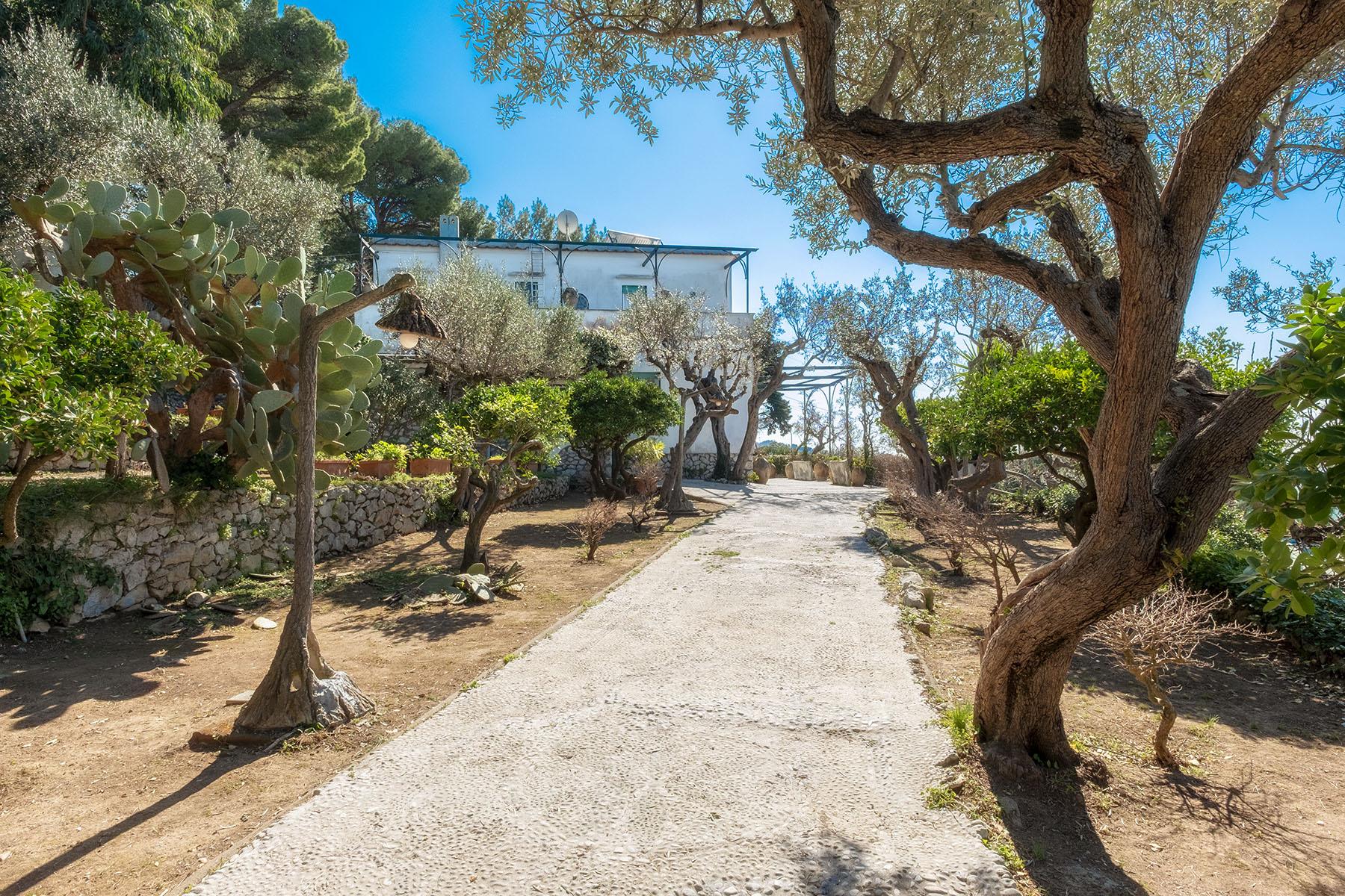 Villa in Vendita a Capri: 5 locali, 250 mq - Foto 2
