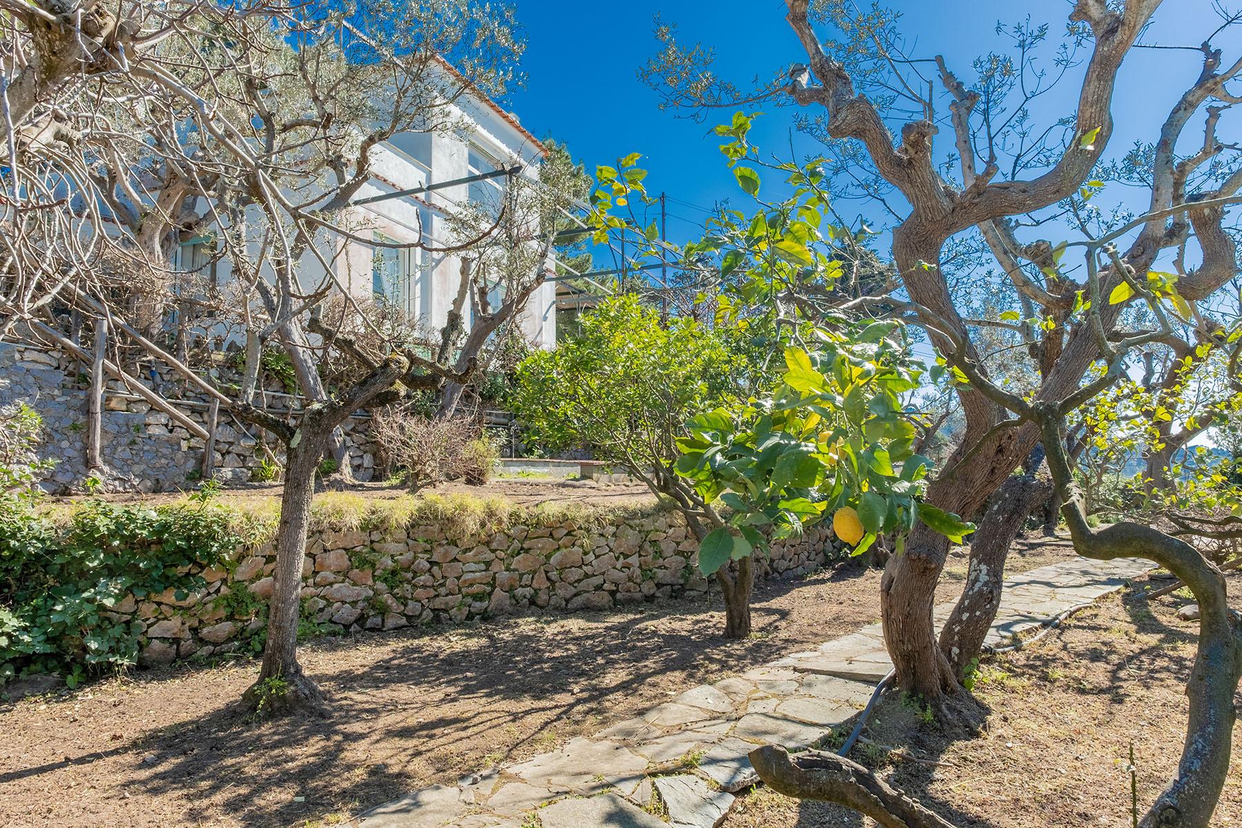 Villa in Vendita a Capri: 5 locali, 250 mq - Foto 22