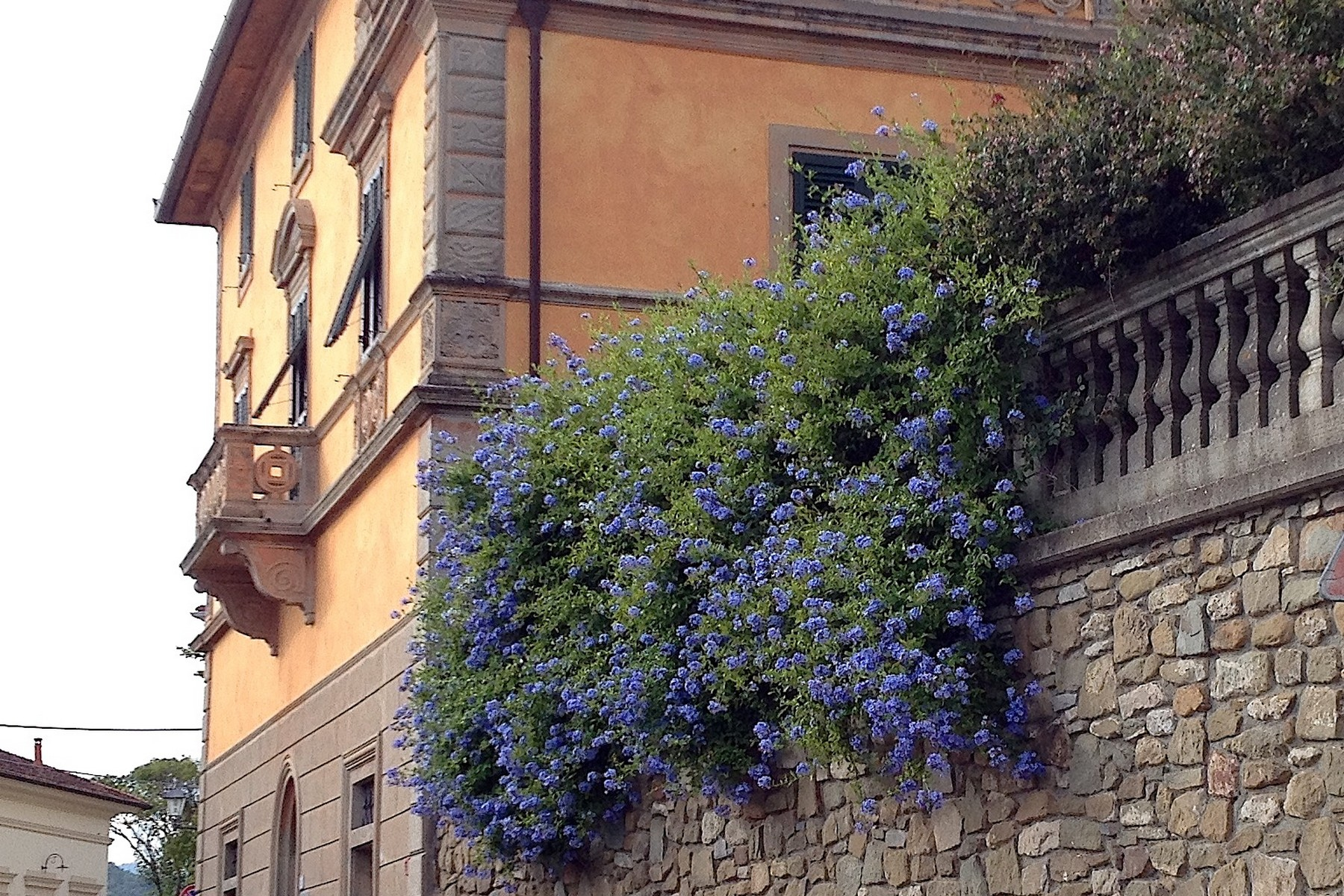 Villa in Vendita a Monsummano Terme: 5 locali, 500 mq - Foto 15