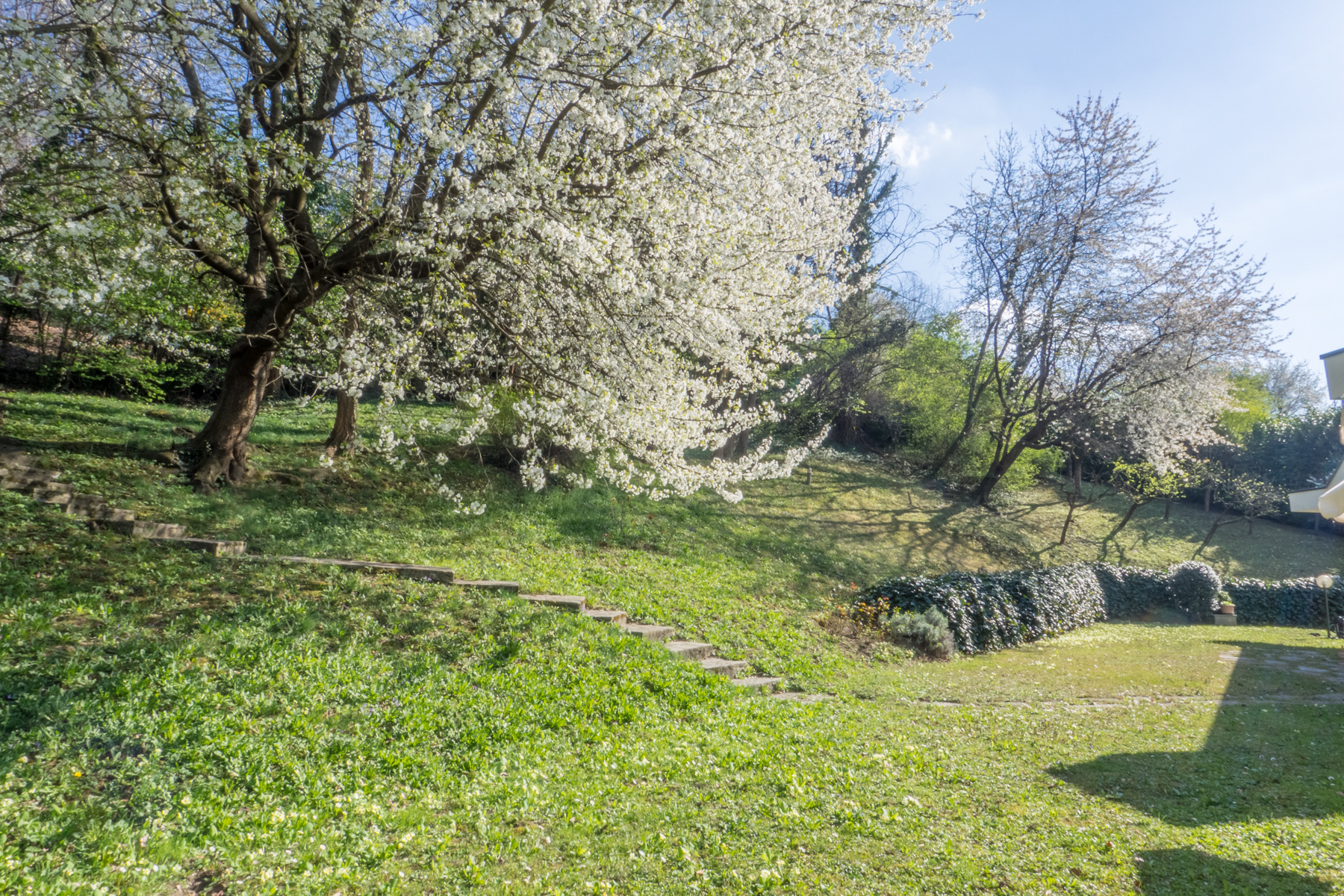 Villa in Vendita a Torino: 5 locali, 600 mq - Foto 29