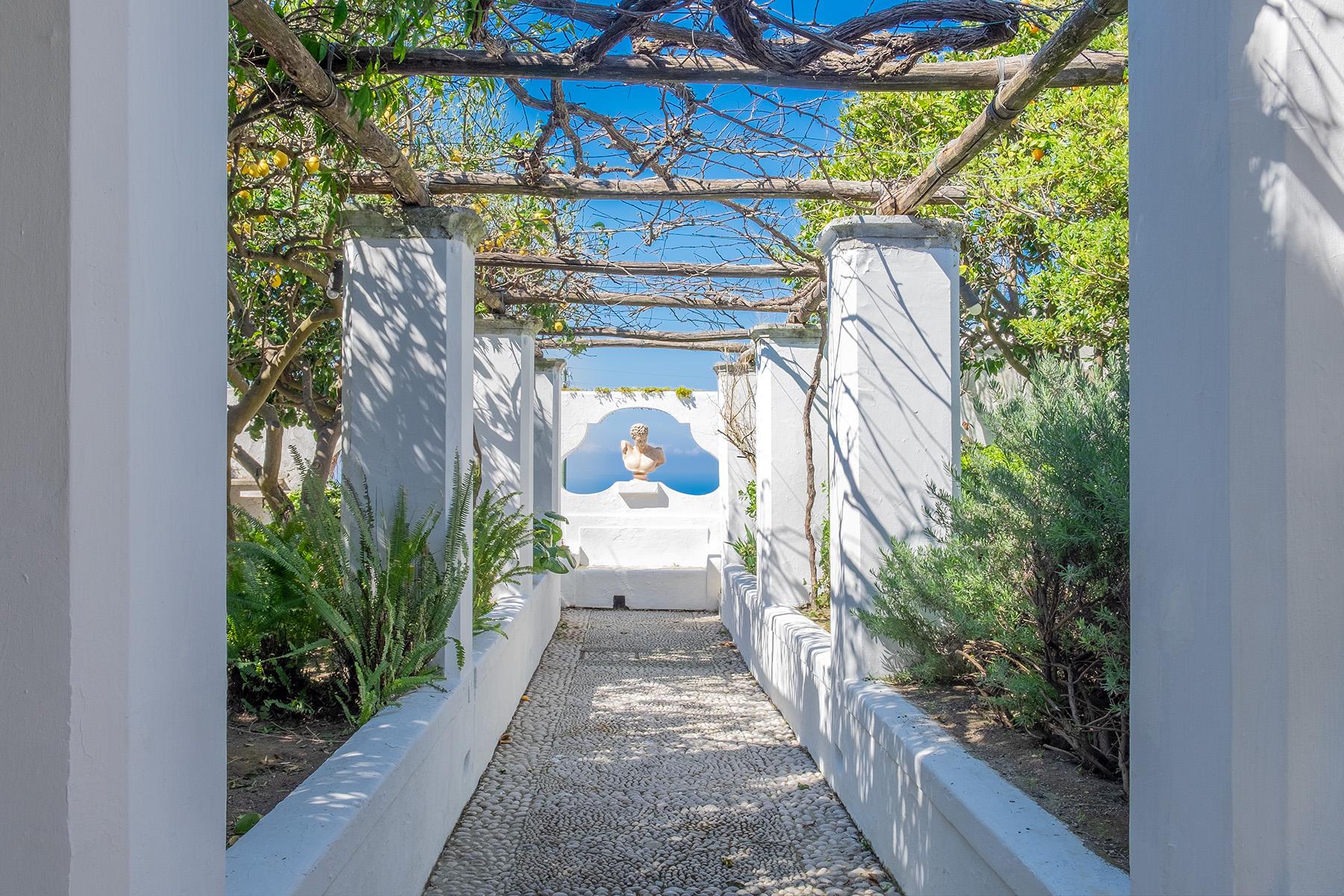 Casa indipendente in Vendita a Capri: 5 locali, 300 mq - Foto 5