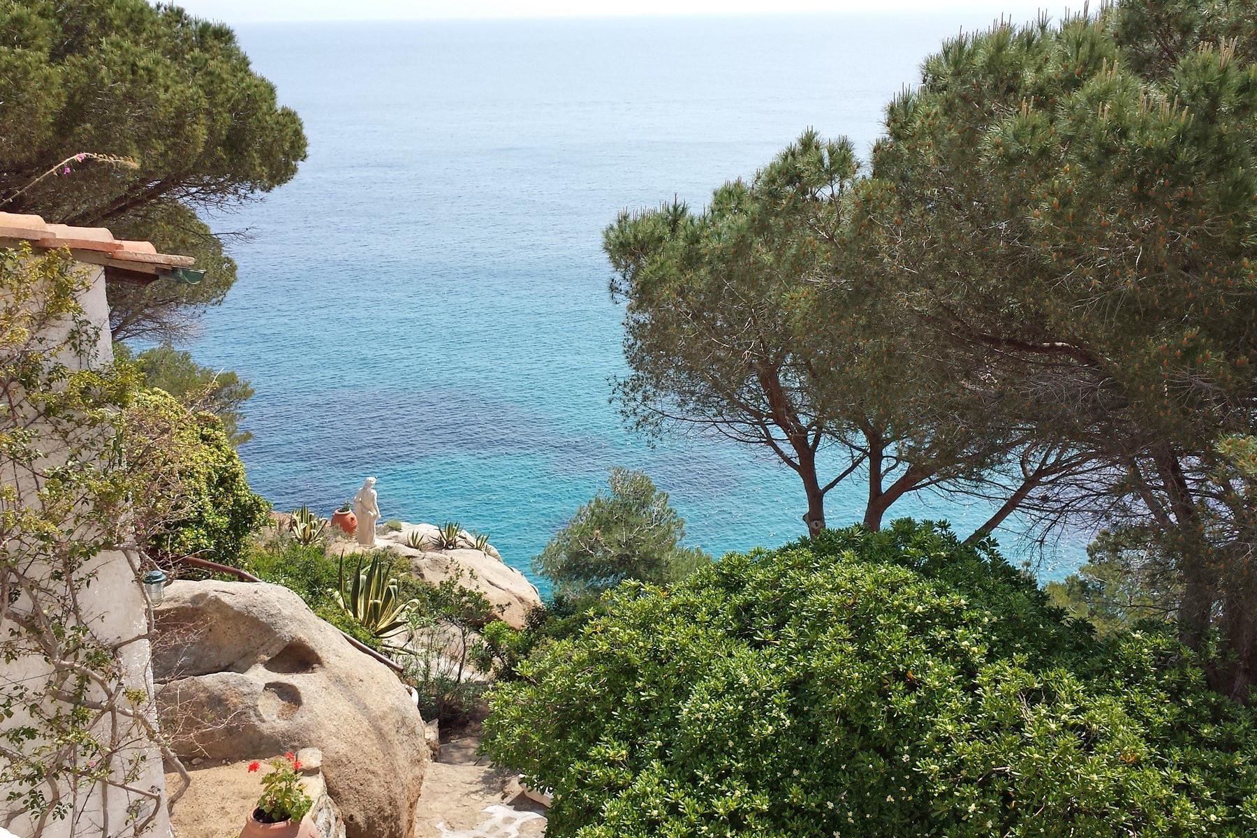 Villa in Vendita a Isola Del Giglio: 5 locali, 210 mq - Foto 5