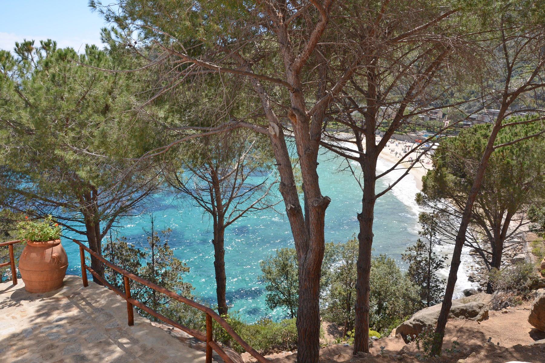 Villa in Vendita a Isola Del Giglio: 5 locali, 210 mq