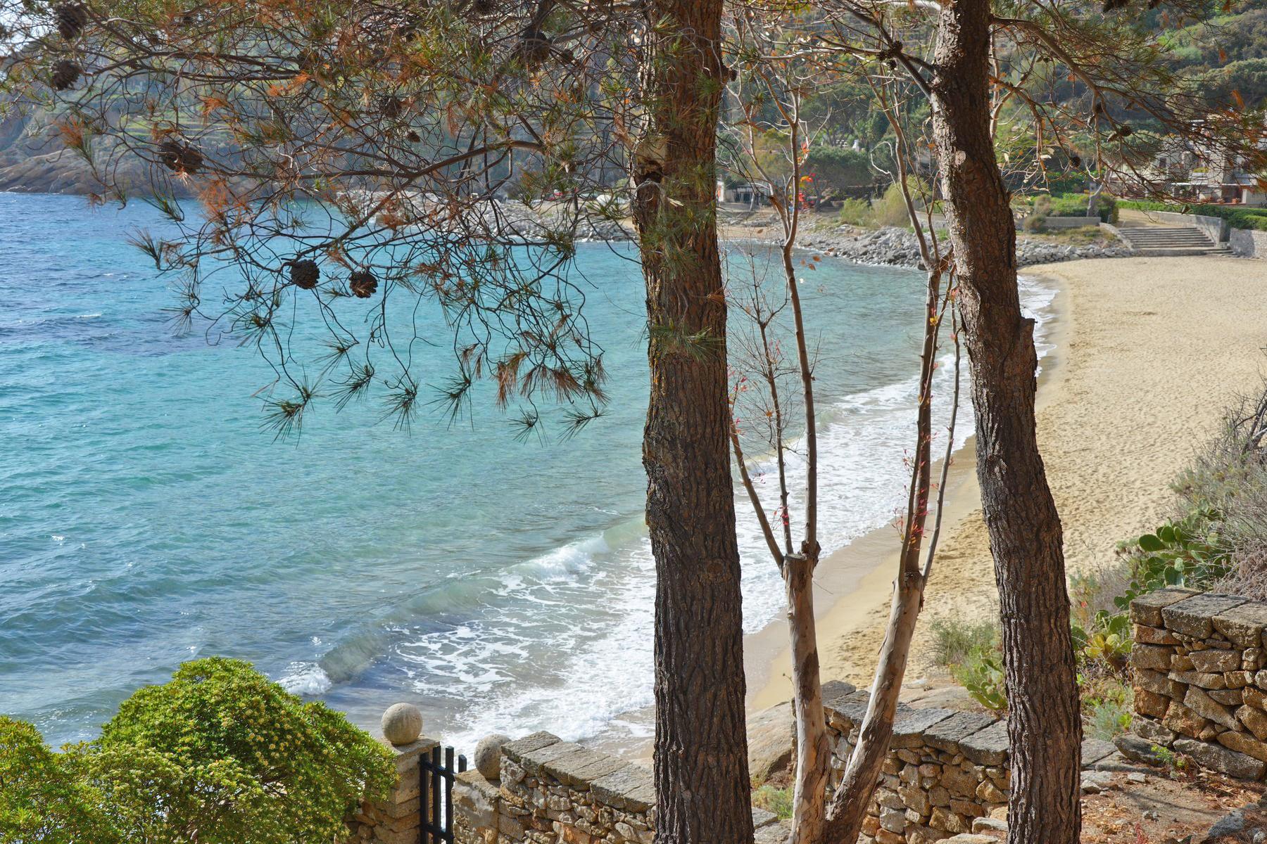 Villa in Vendita a Isola Del Giglio: 5 locali, 210 mq - Foto 3