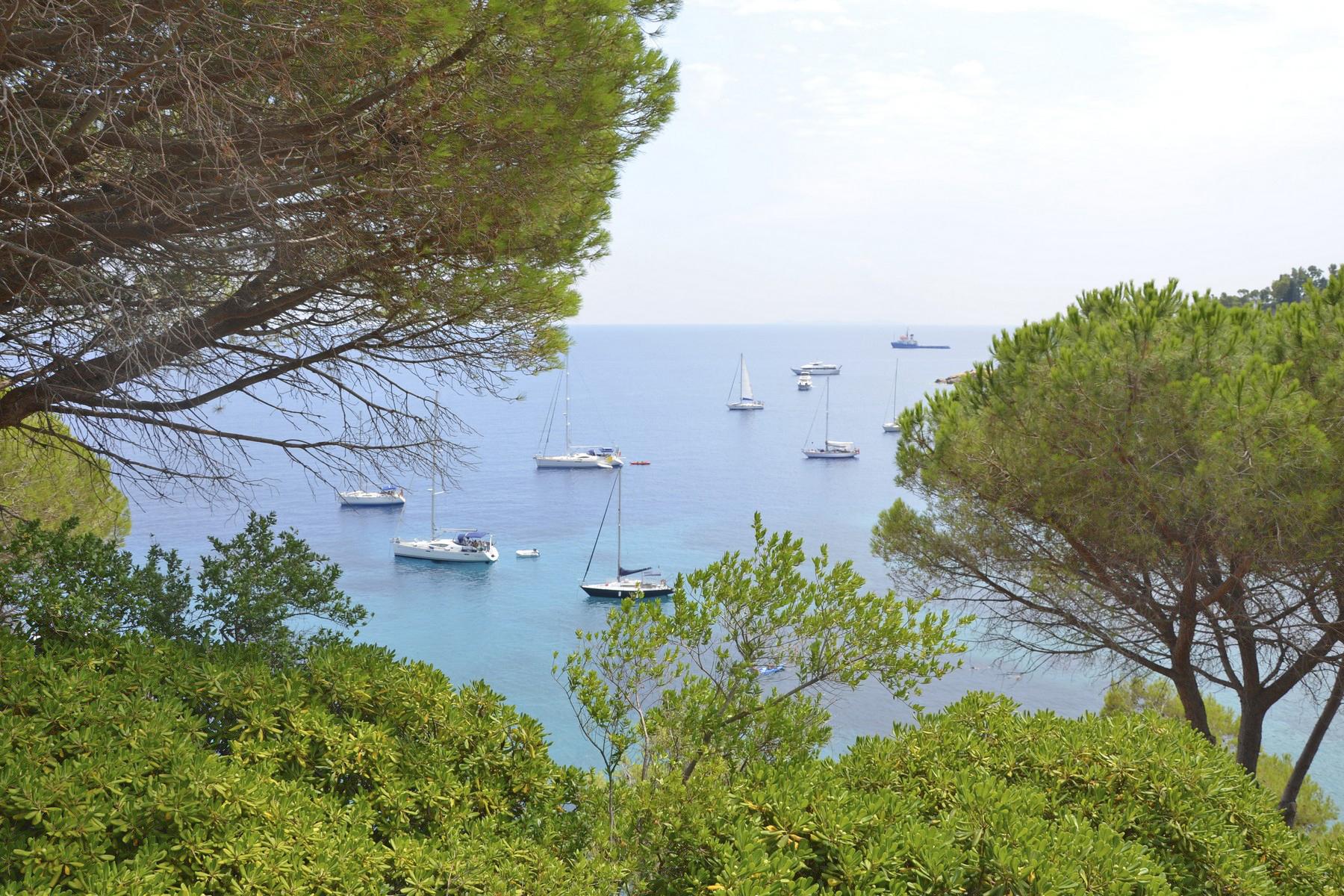 Villa in Vendita a Isola Del Giglio: 5 locali, 210 mq - Foto 10