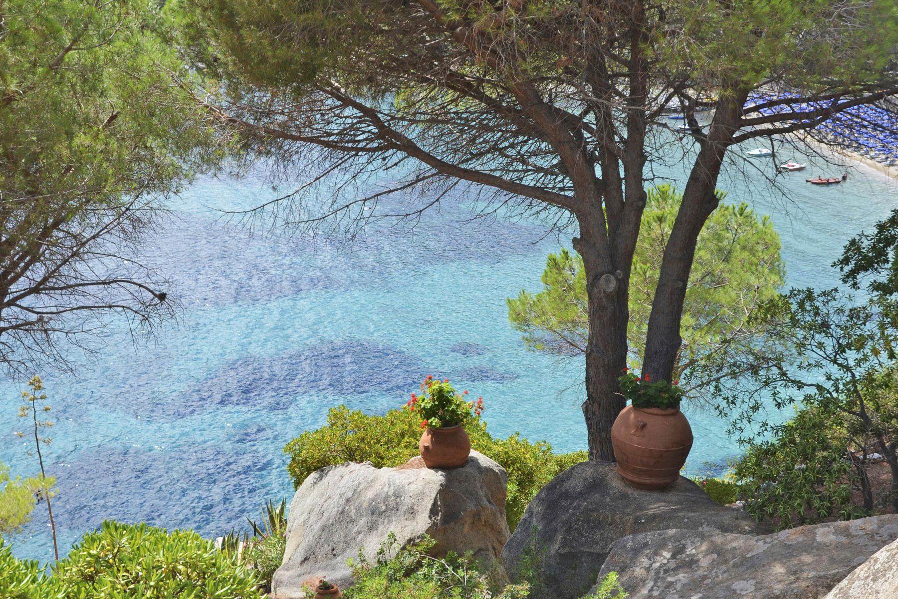 Villa in Vendita a Isola Del Giglio: 5 locali, 210 mq - Foto 2