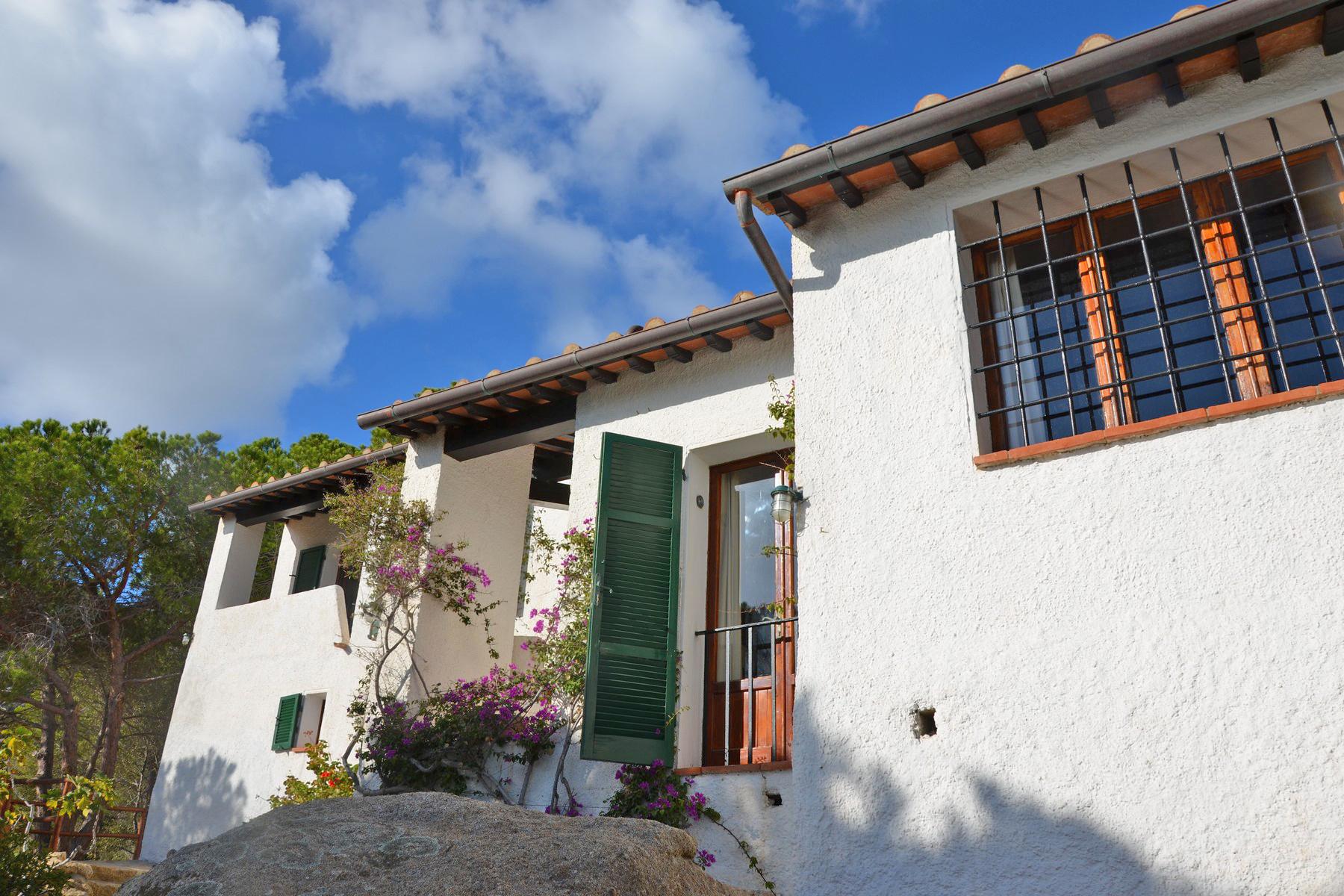 Villa in Vendita a Isola Del Giglio: 5 locali, 210 mq - Foto 8