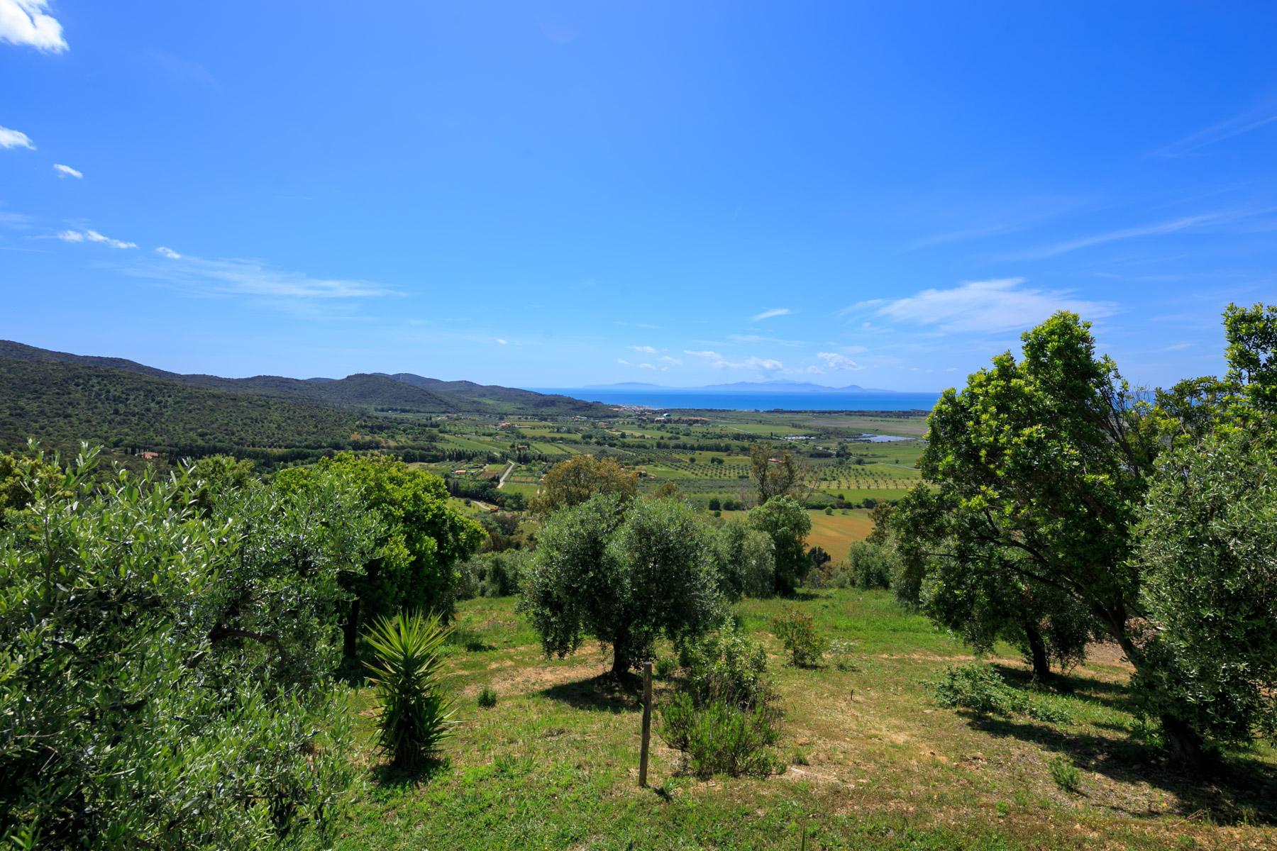 Villa in Vendita a Scarlino: 5 locali, 400 mq - Foto 6
