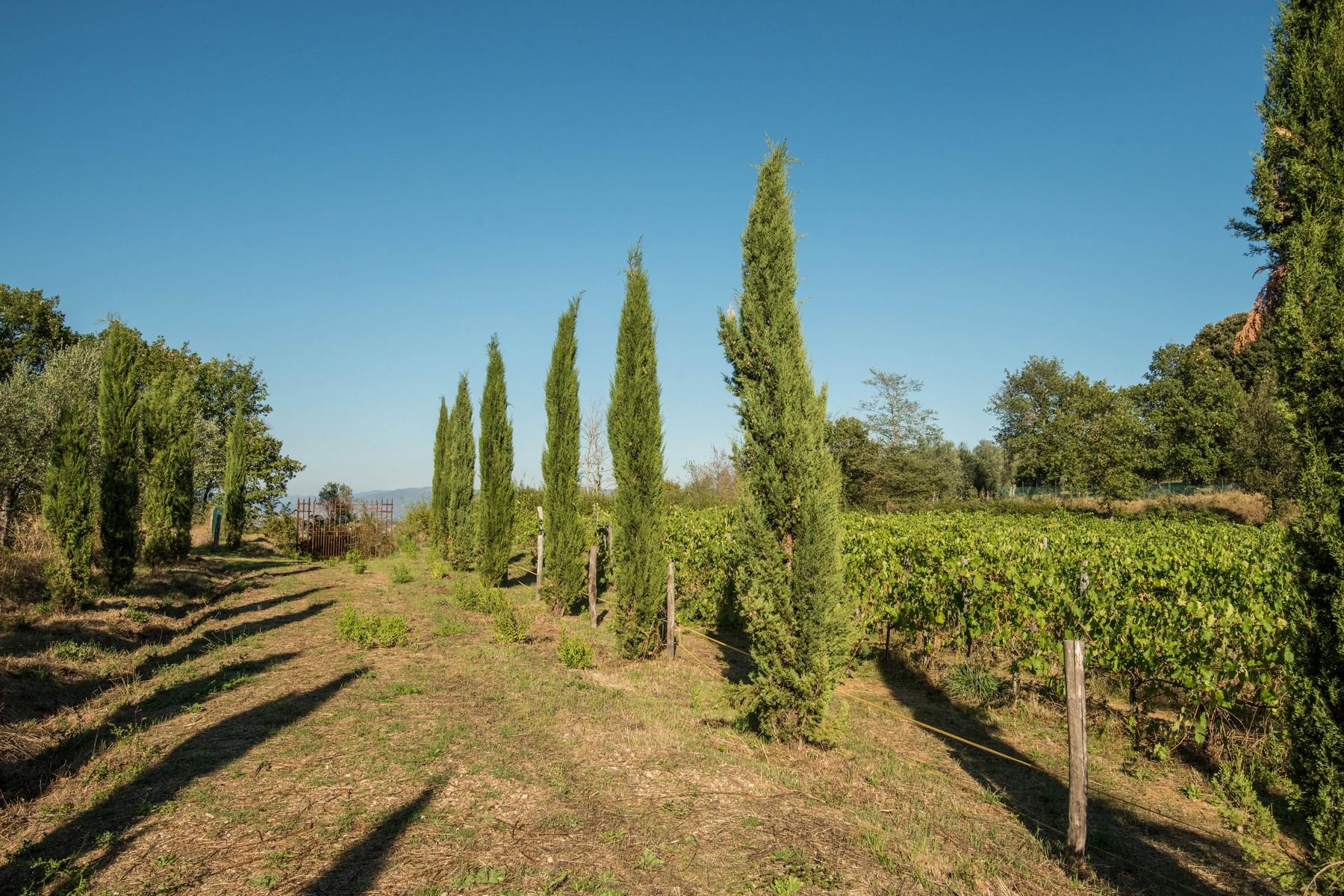 Villa in Vendita a Monte San Savino: 5 locali, 340 mq - Foto 4