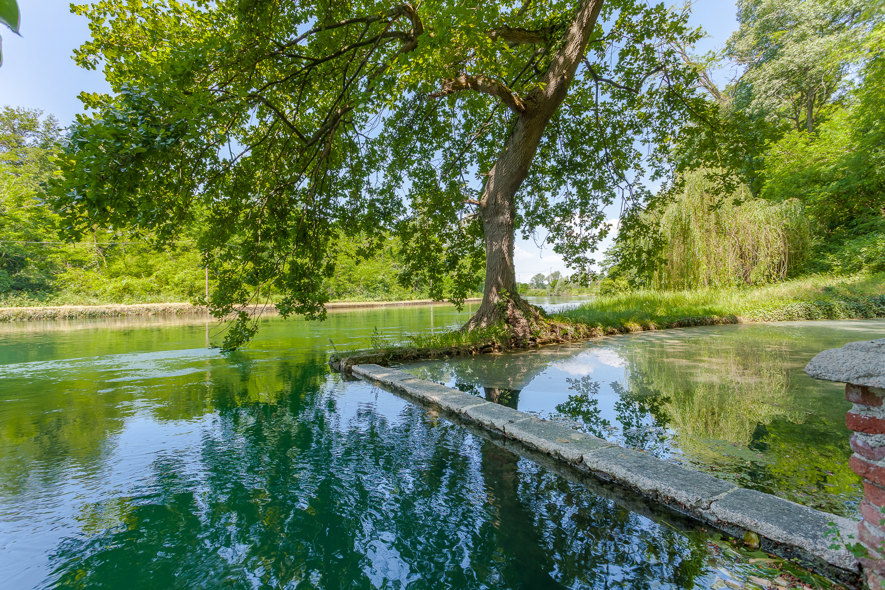 Villa in Vendita a Cuggiono: 5 locali, 7000 mq - Foto 9