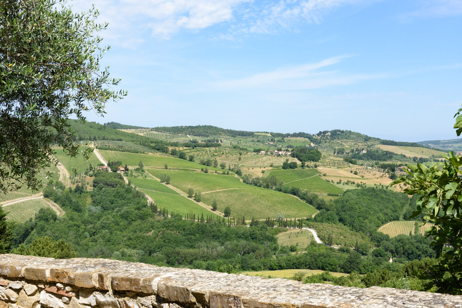 Rustico in Vendita a Castellina In Chianti: 5 locali, 650 mq - Foto 21