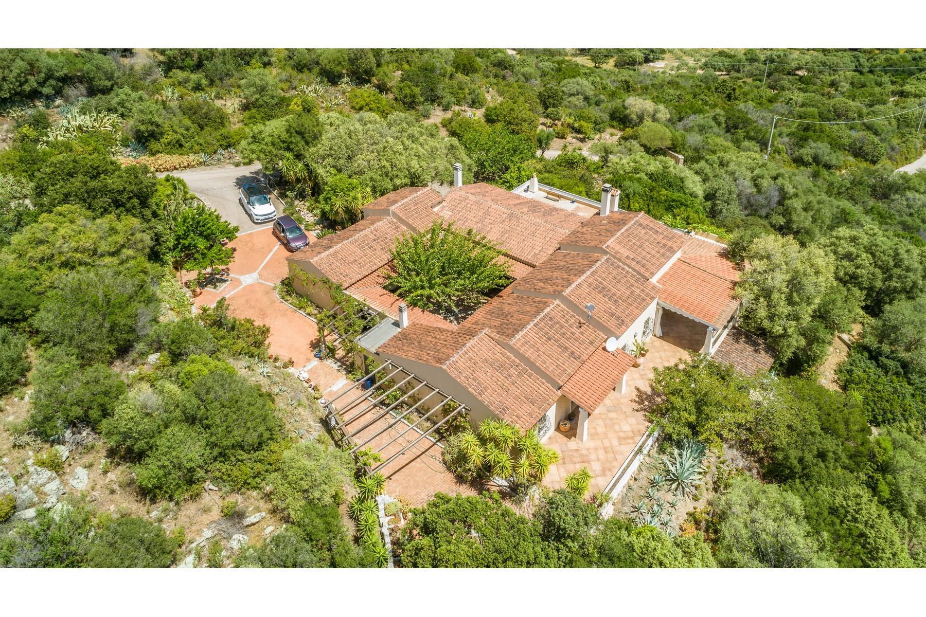 Villa in Vendita a Olbia: 5 locali, 483 mq - Foto 3