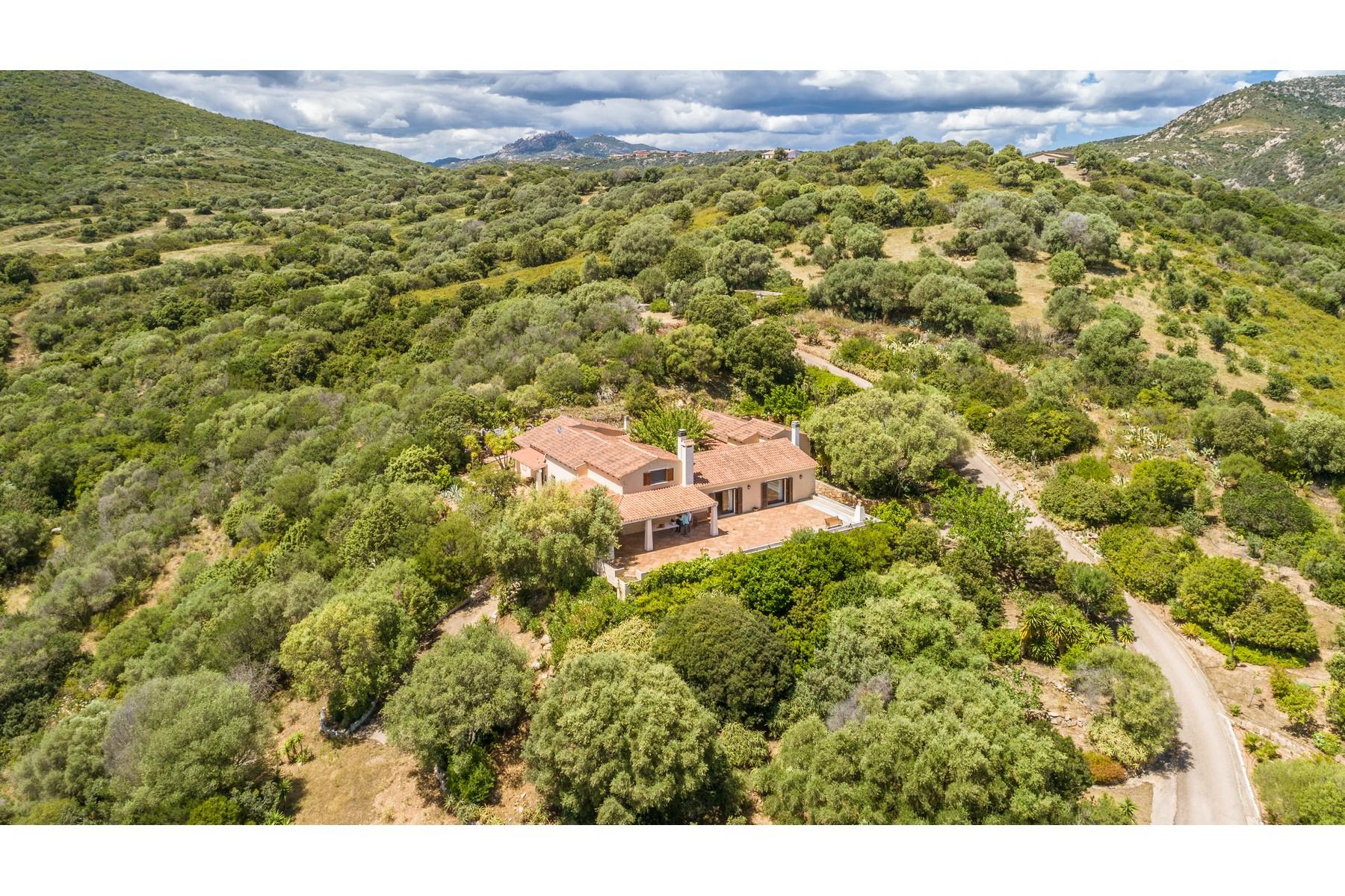 Villa in Vendita a Olbia: 5 locali, 483 mq - Foto 4