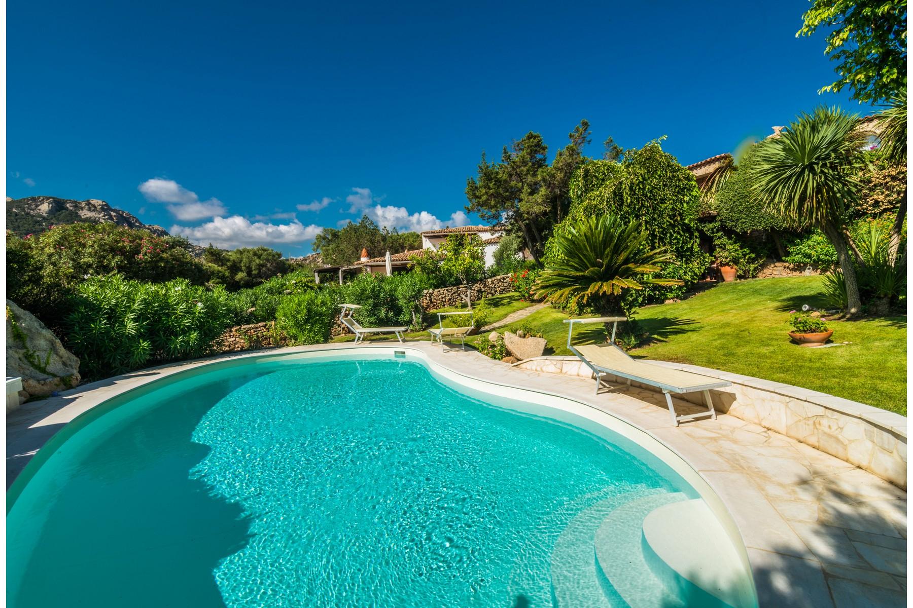 Villa in Vendita a Arzachena: 5 locali, 173 mq
