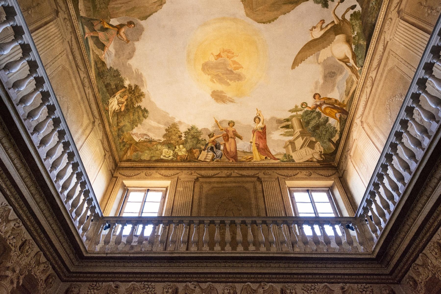 Villa in Vendita a Pisa: 5 locali, 2820 mq - Foto 9