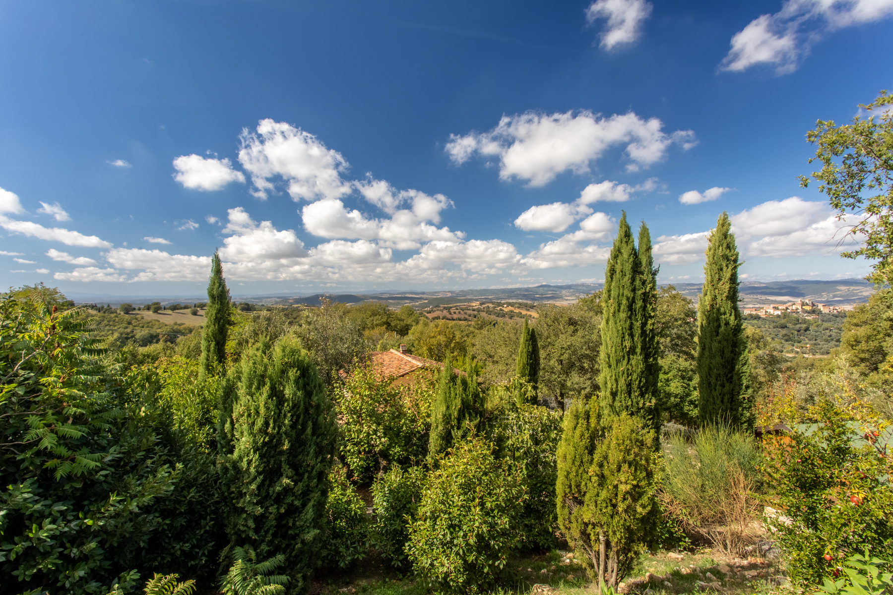 Rustico in Vendita a Manciano: 5 locali, 520 mq - Foto 26