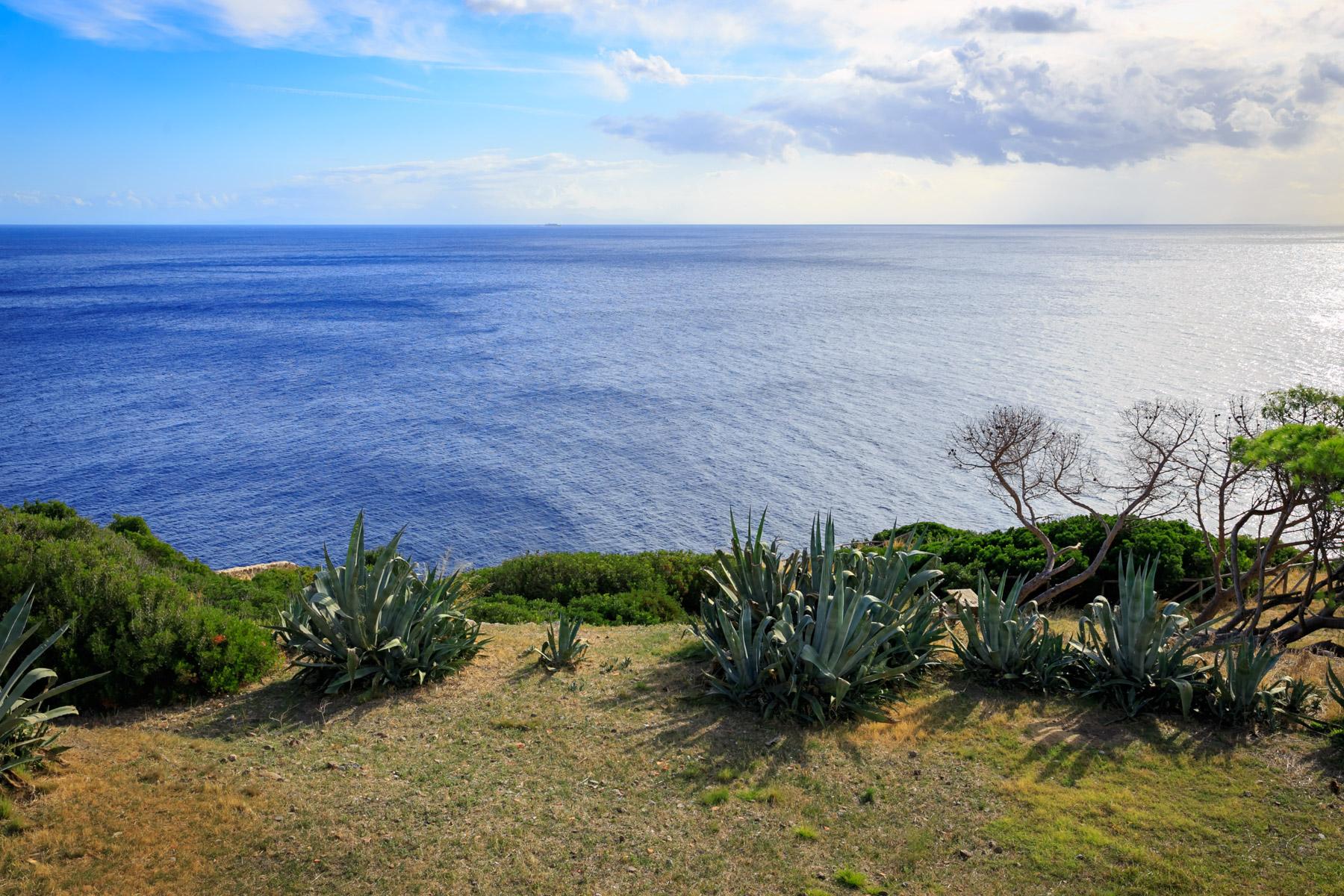 Villa in Vendita a Capraia Isola: 5 locali, 320 mq - Foto 28