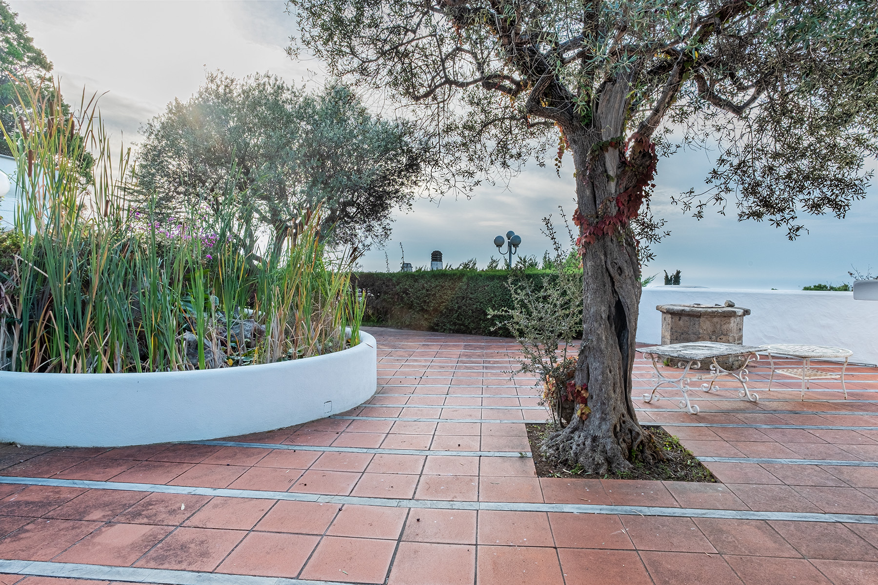 Villa in Vendita a Capri: 5 locali, 250 mq - Foto 19