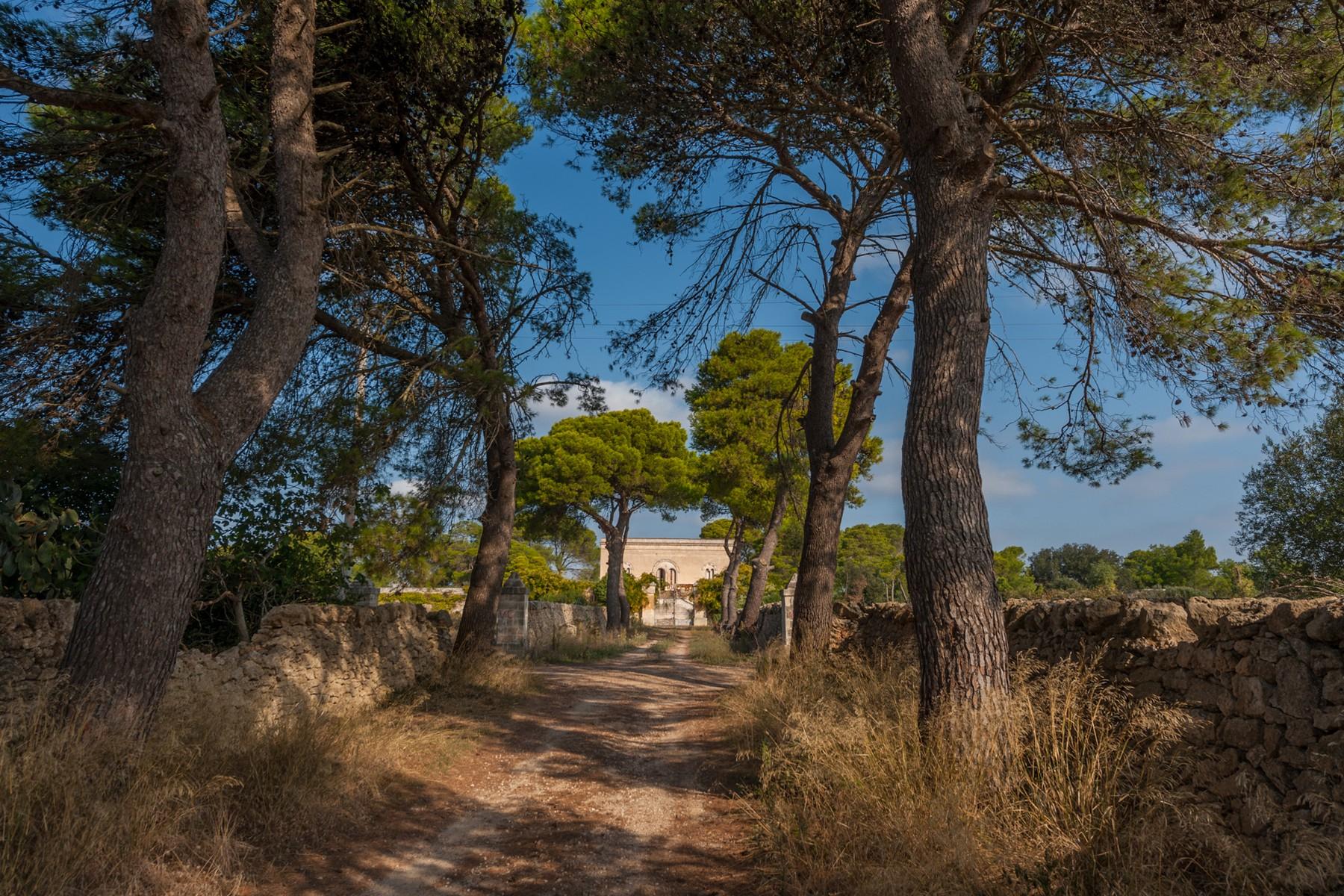Villa in Vendita a Avetrana: 5 locali, 950 mq - Foto 6
