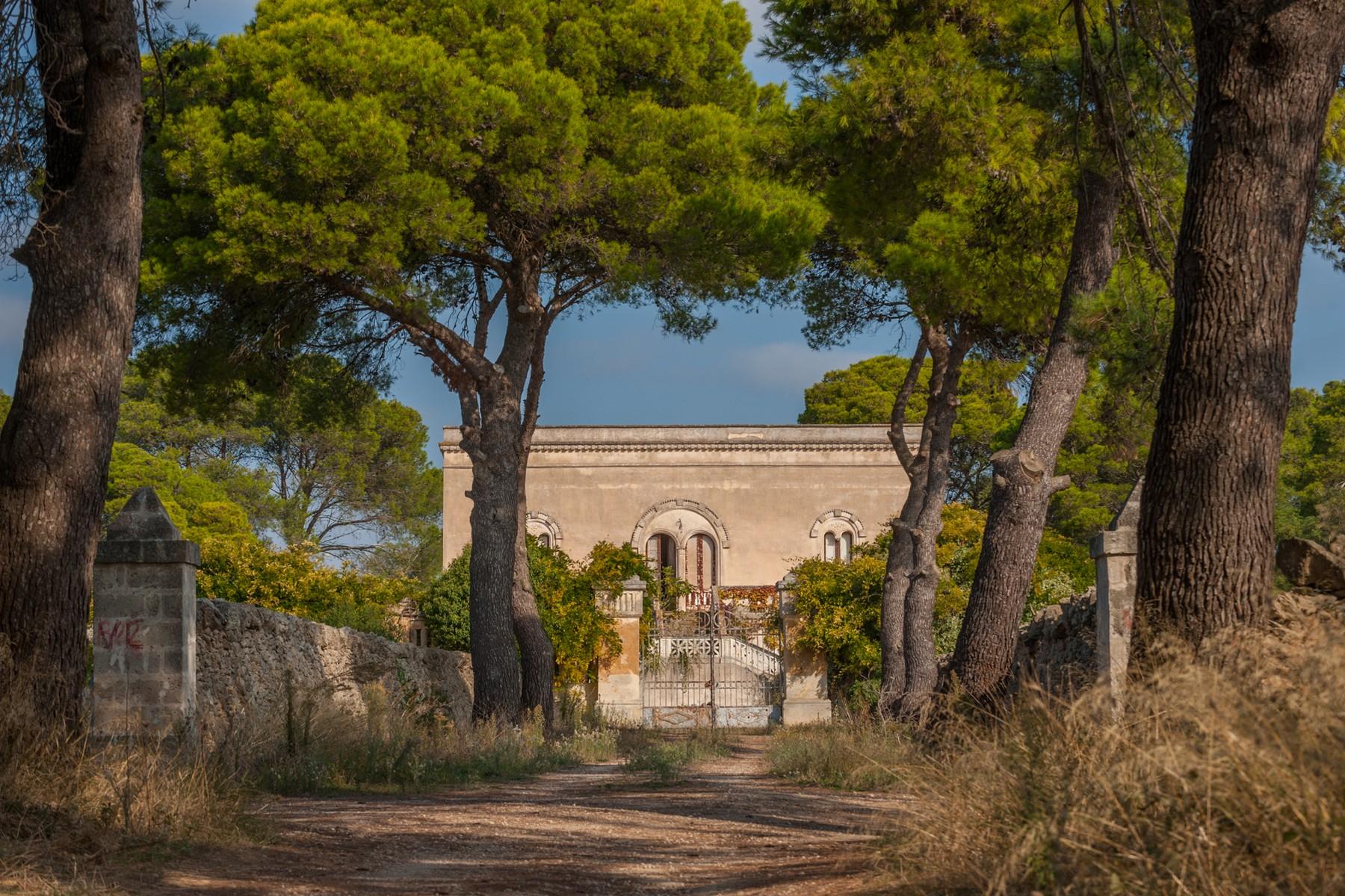 Villa in Vendita a Avetrana: 5 locali, 950 mq - Foto 7