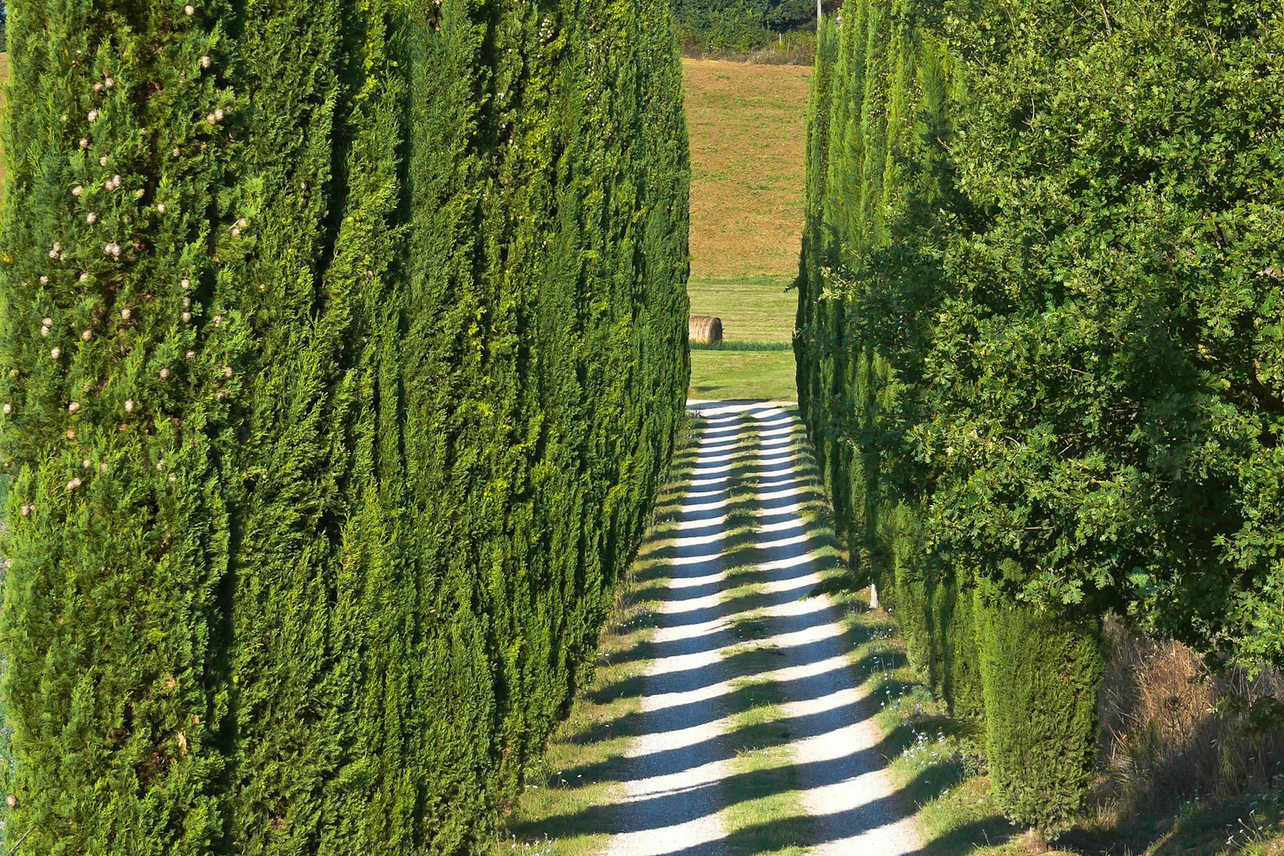 Villa in Vendita a Castiglione Del Lago: 5 locali, 780 mq - Foto 26