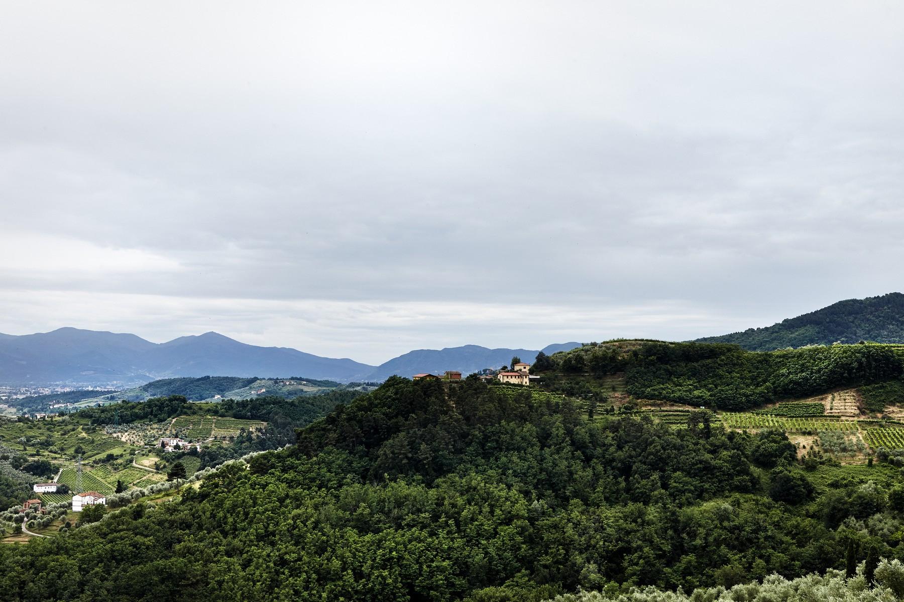 Villa in Vendita a Lucca: 5 locali, 2500 mq - Foto 13