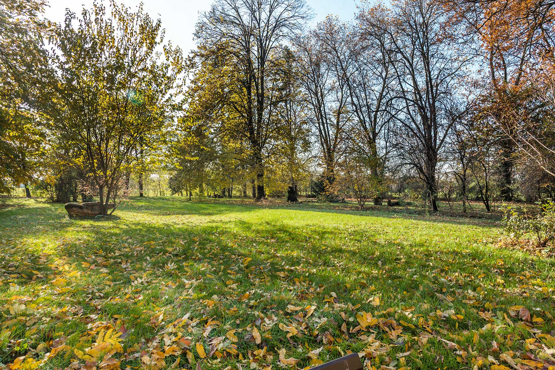Villa in Vendita a Parma: 5 locali, 1000 mq - Foto 20