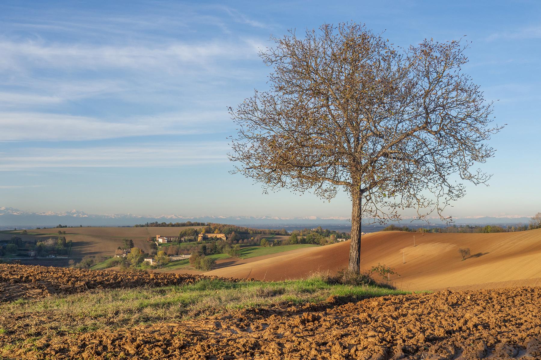 Villa in Vendita a Valenza: 5 locali, 3300 mq - Foto 29