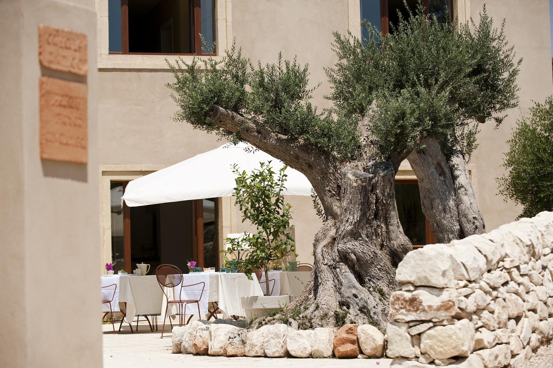 Villa in Vendita a Ragusa: 5 locali, 3000 mq - Foto 3
