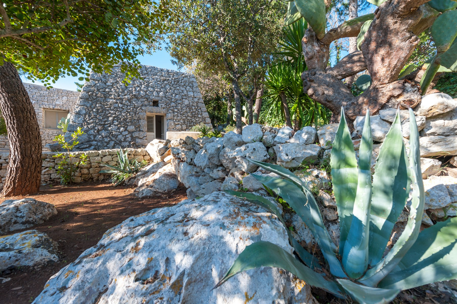 Casa indipendente in Vendita a Gagliano Del Capo: 5 locali, 290 mq - Foto 13