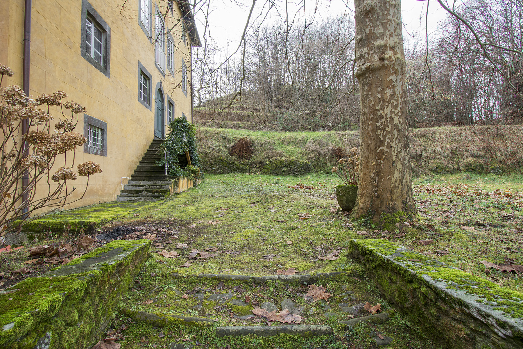 Villa in Vendita a Coreglia Antelminelli: 5 locali, 940 mq - Foto 19