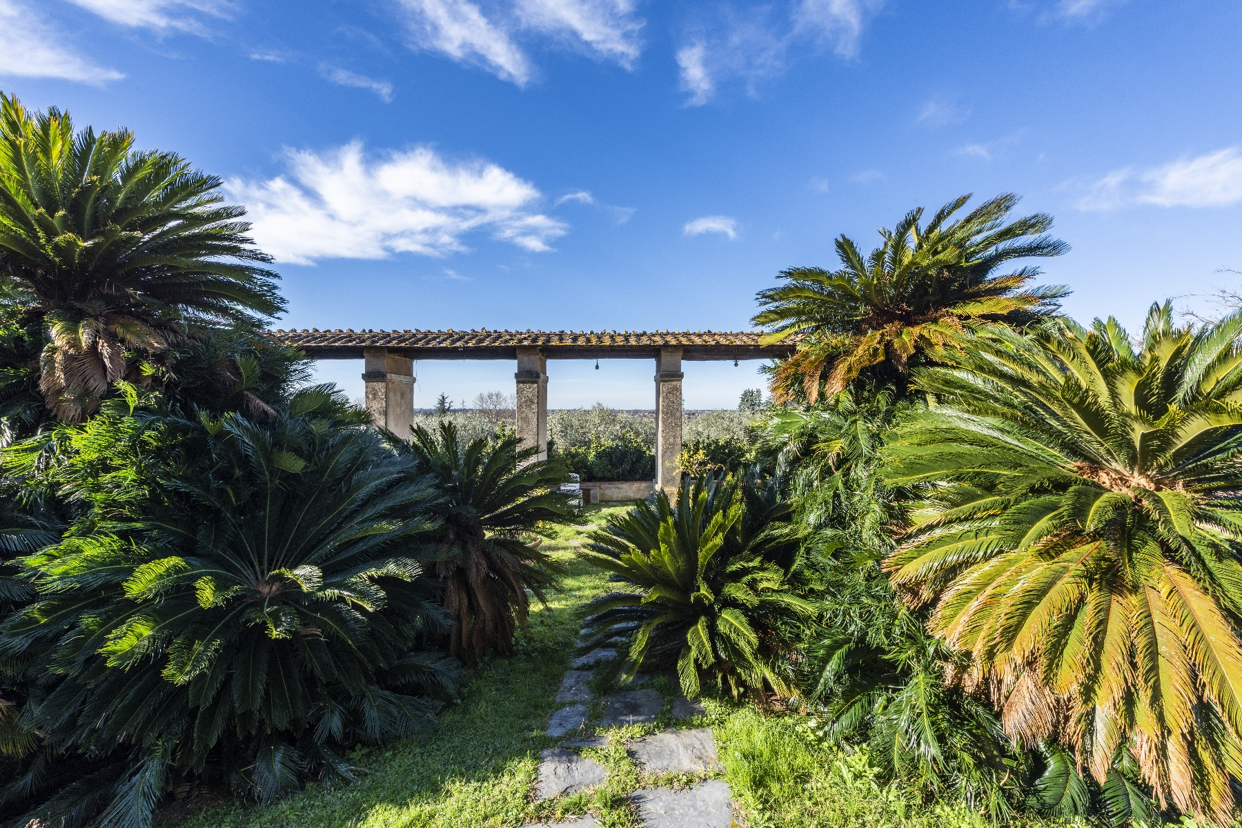 Villa in Vendita a Camaiore: 5 locali, 2800 mq - Foto 25