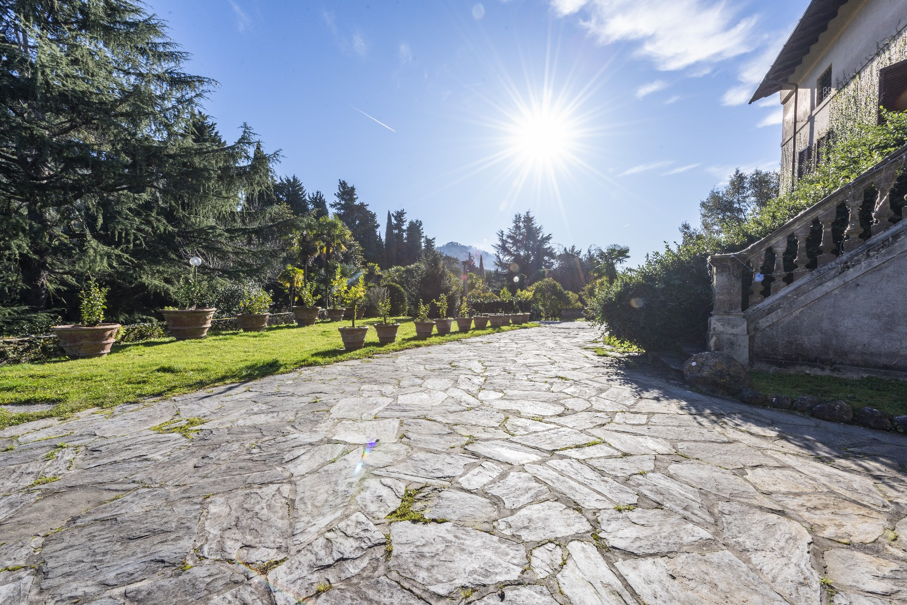 Villa in Vendita a Camaiore: 5 locali, 2800 mq - Foto 5