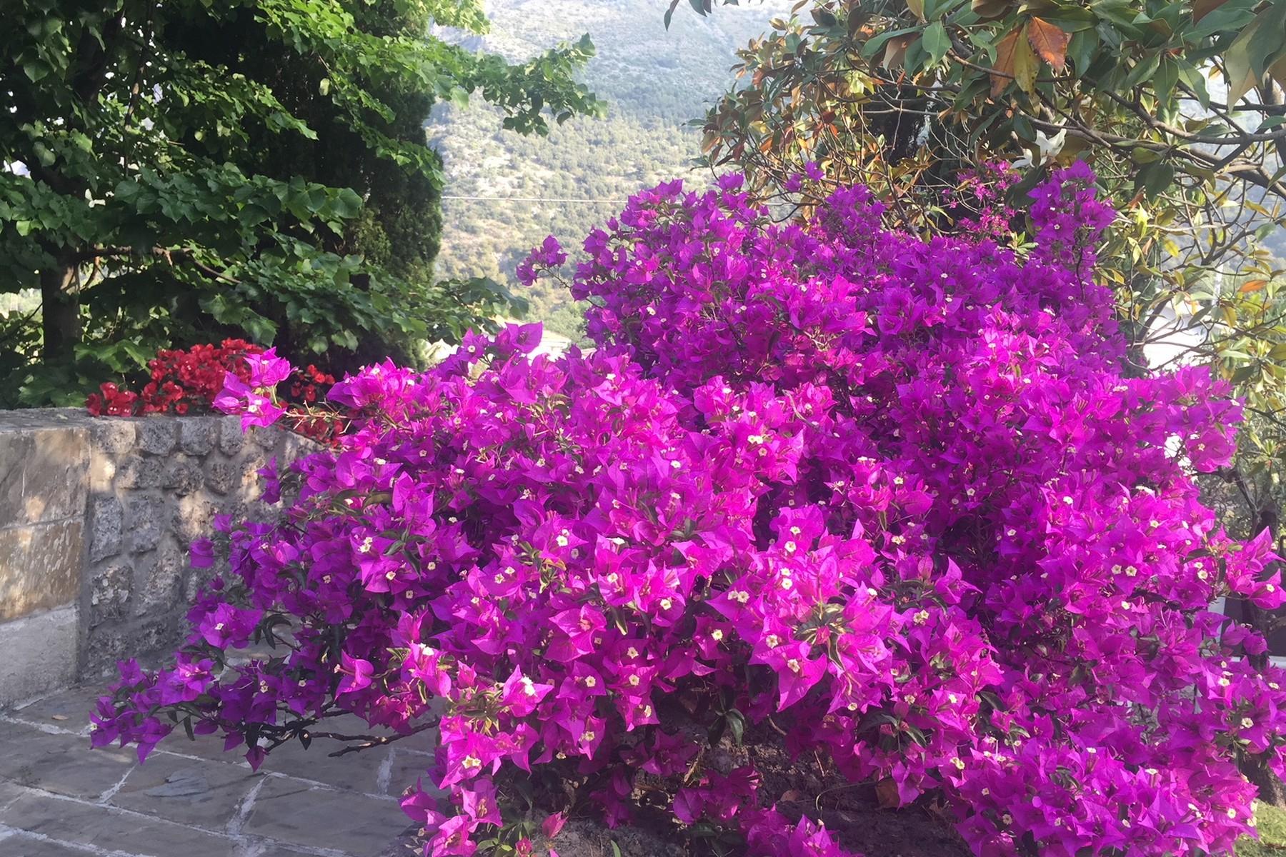 Villa in Vendita a Maratea: 5 locali, 250 mq - Foto 15