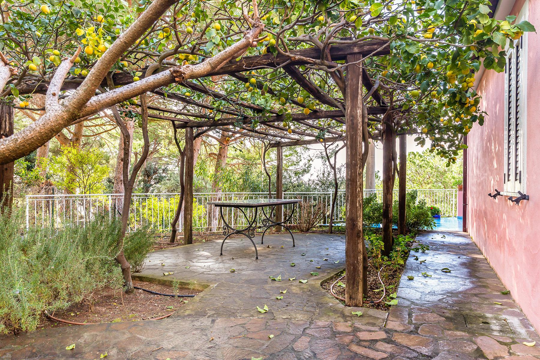 Villa in Vendita a Maratea: 5 locali, 280 mq - Foto 3