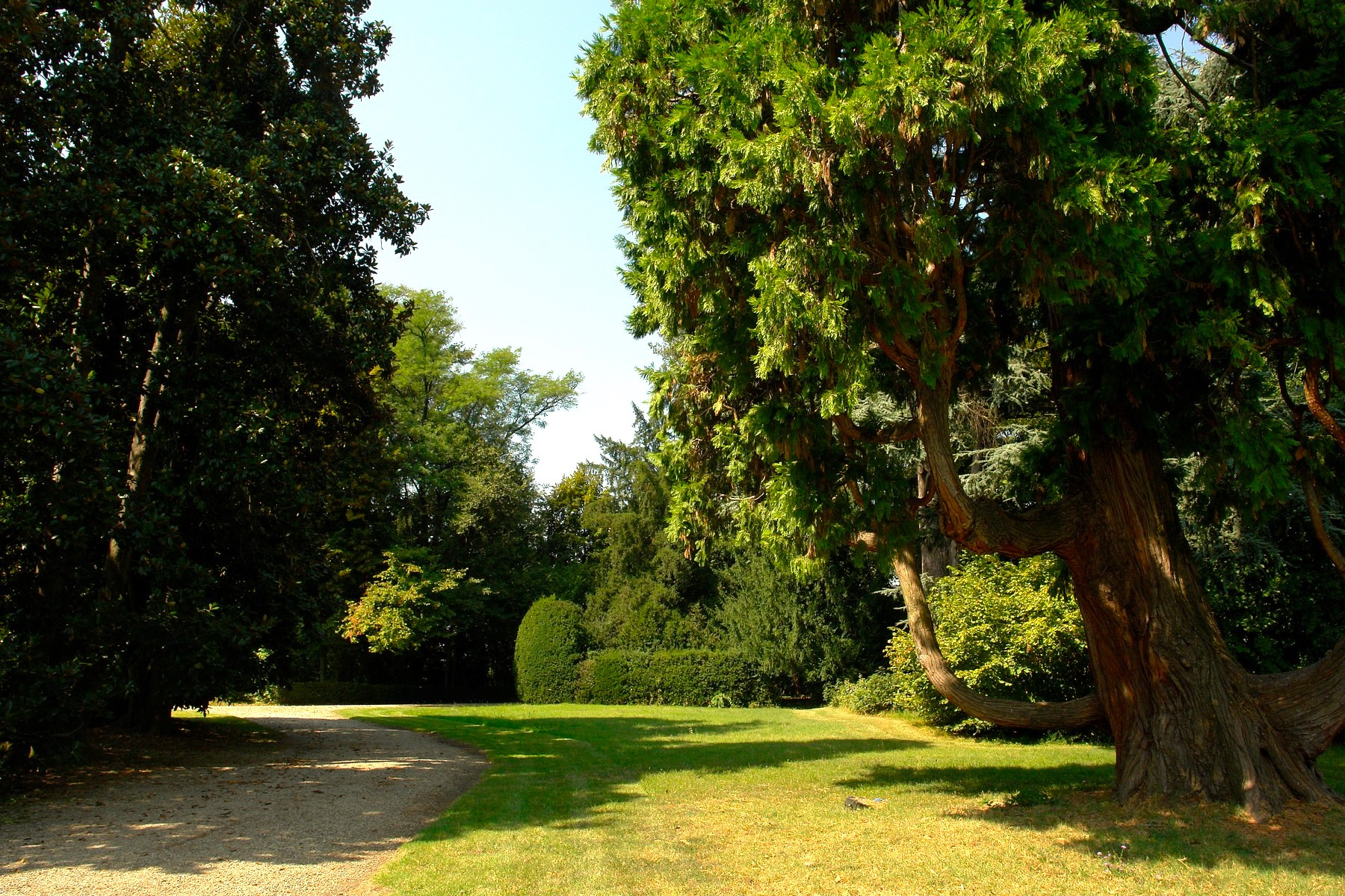 Villa in Vendita a Crespellano: 5 locali, 1415 mq - Foto 25