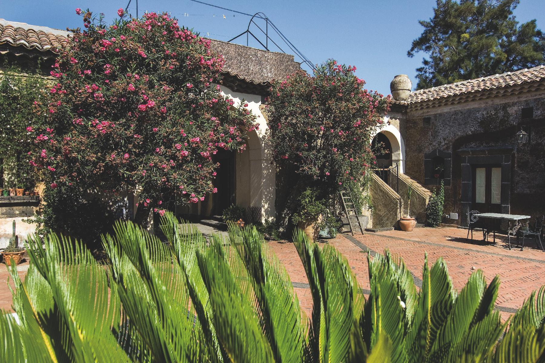 Villa in Vendita a Mascalucia: 5 locali, 600 mq - Foto 2