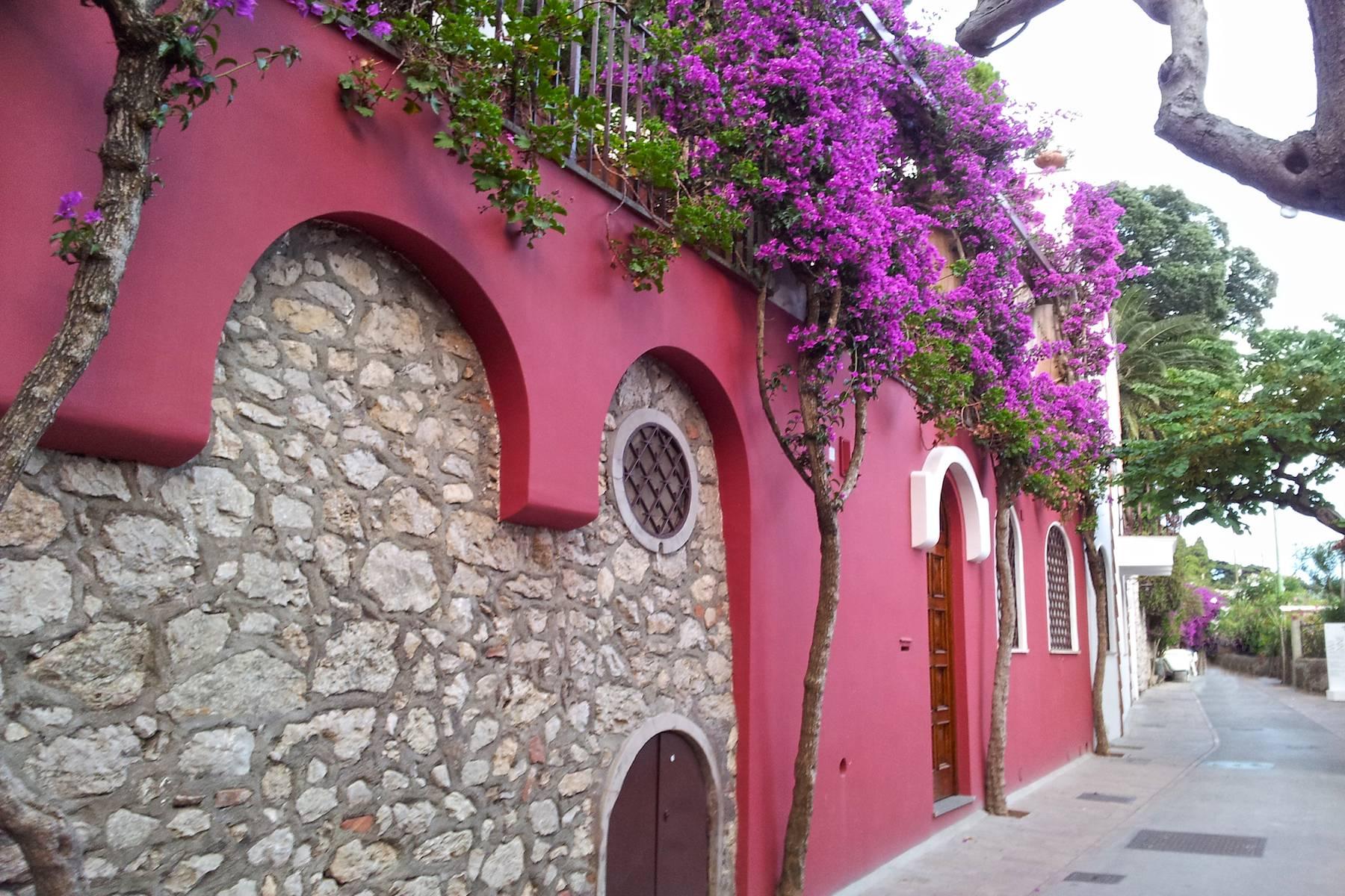 Villa in Vendita a Capri: 5 locali, 300 mq - Foto 23