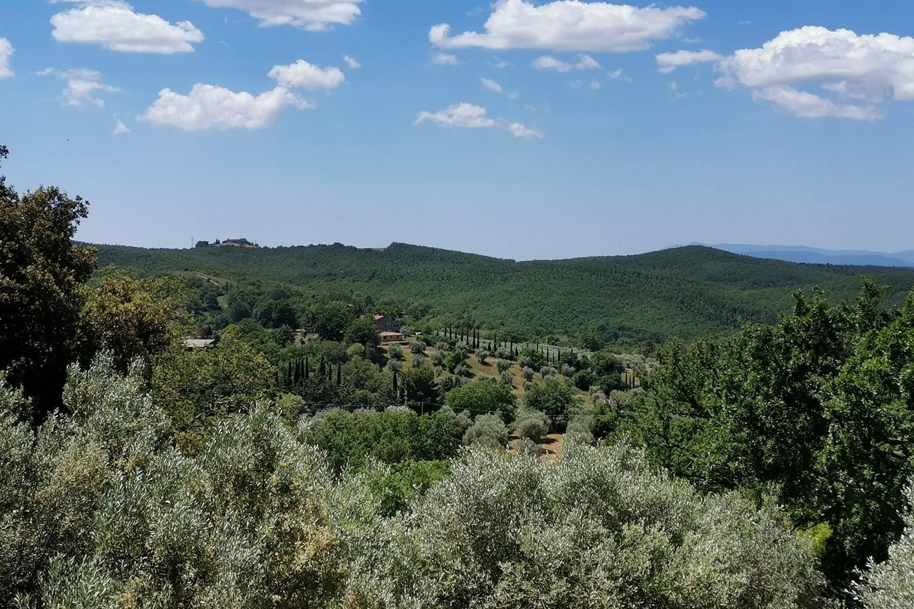 Casa indipendente in Vendita a Manciano: 5 locali, 240 mq - Foto 21