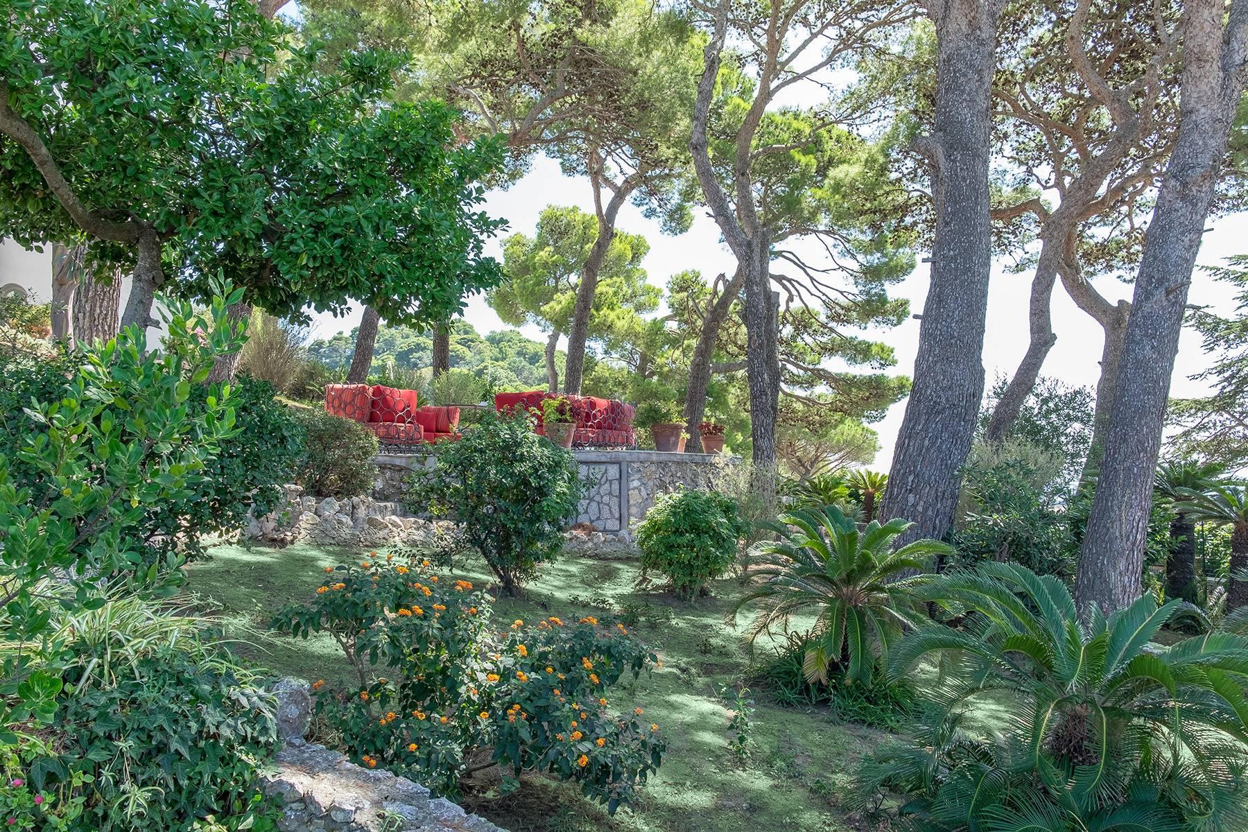 Villa in Vendita a Capri: 5 locali, 450 mq - Foto 6