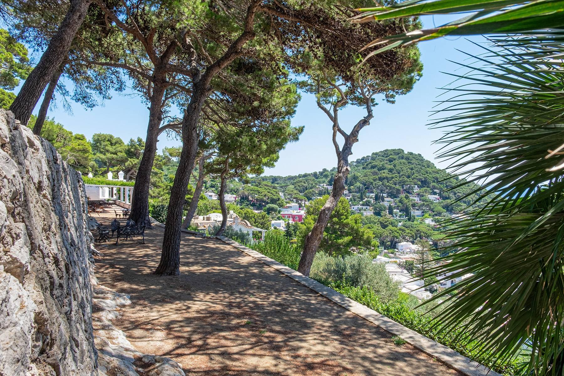 Villa in Vendita a Capri: 5 locali, 300 mq - Foto 27