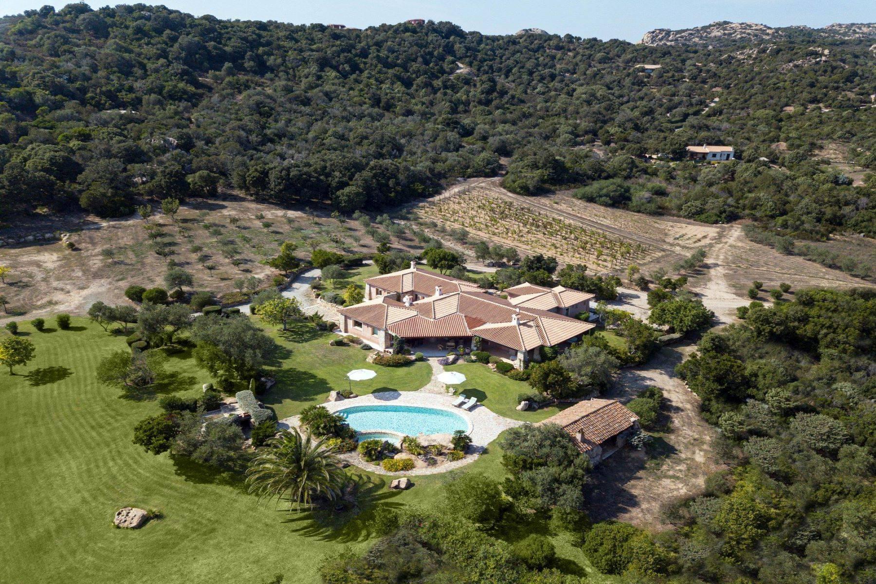 Villa in Vendita a Arzachena: 5 locali, 600 mq - Foto 11