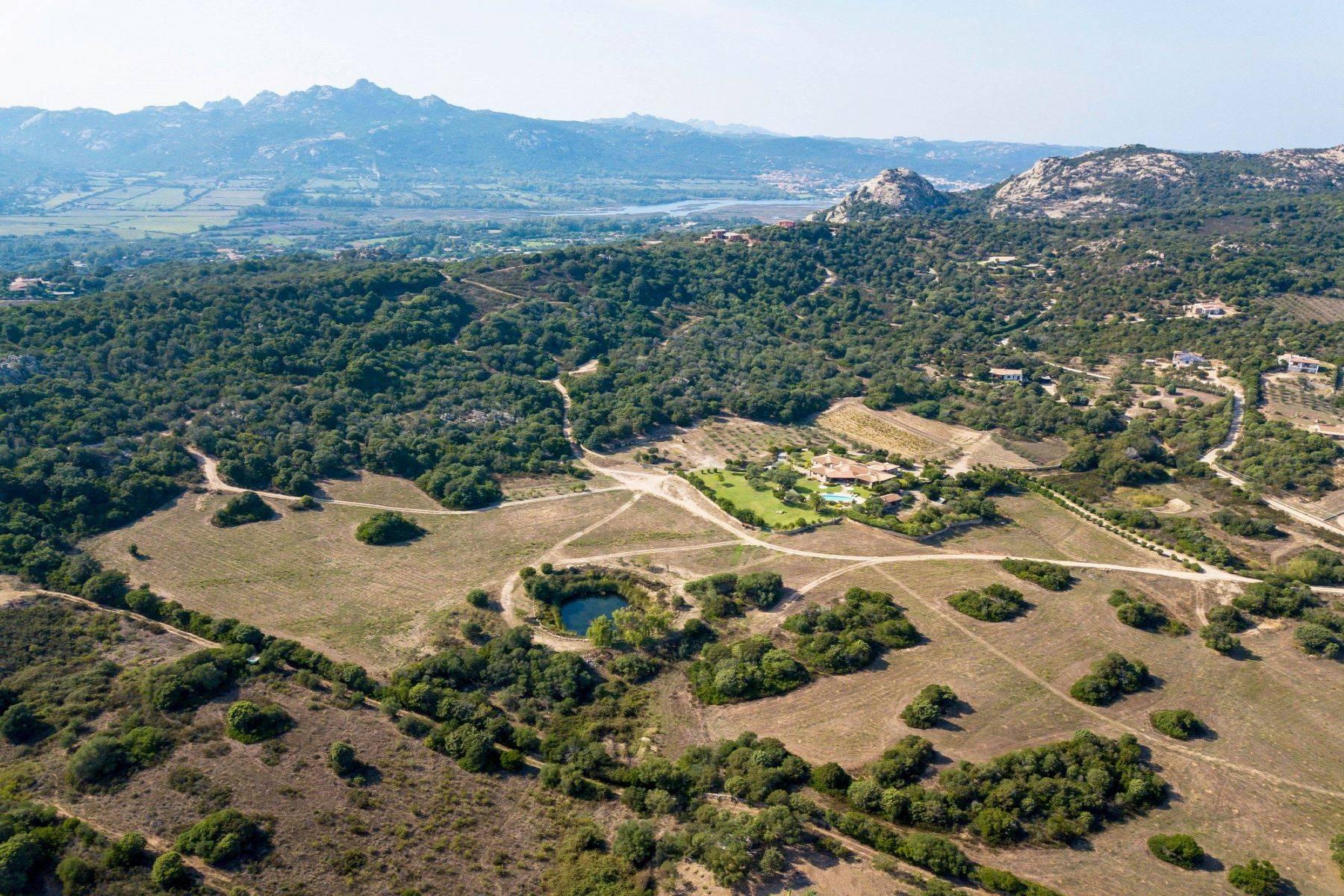 Villa in Vendita a Arzachena: 5 locali, 600 mq - Foto 13