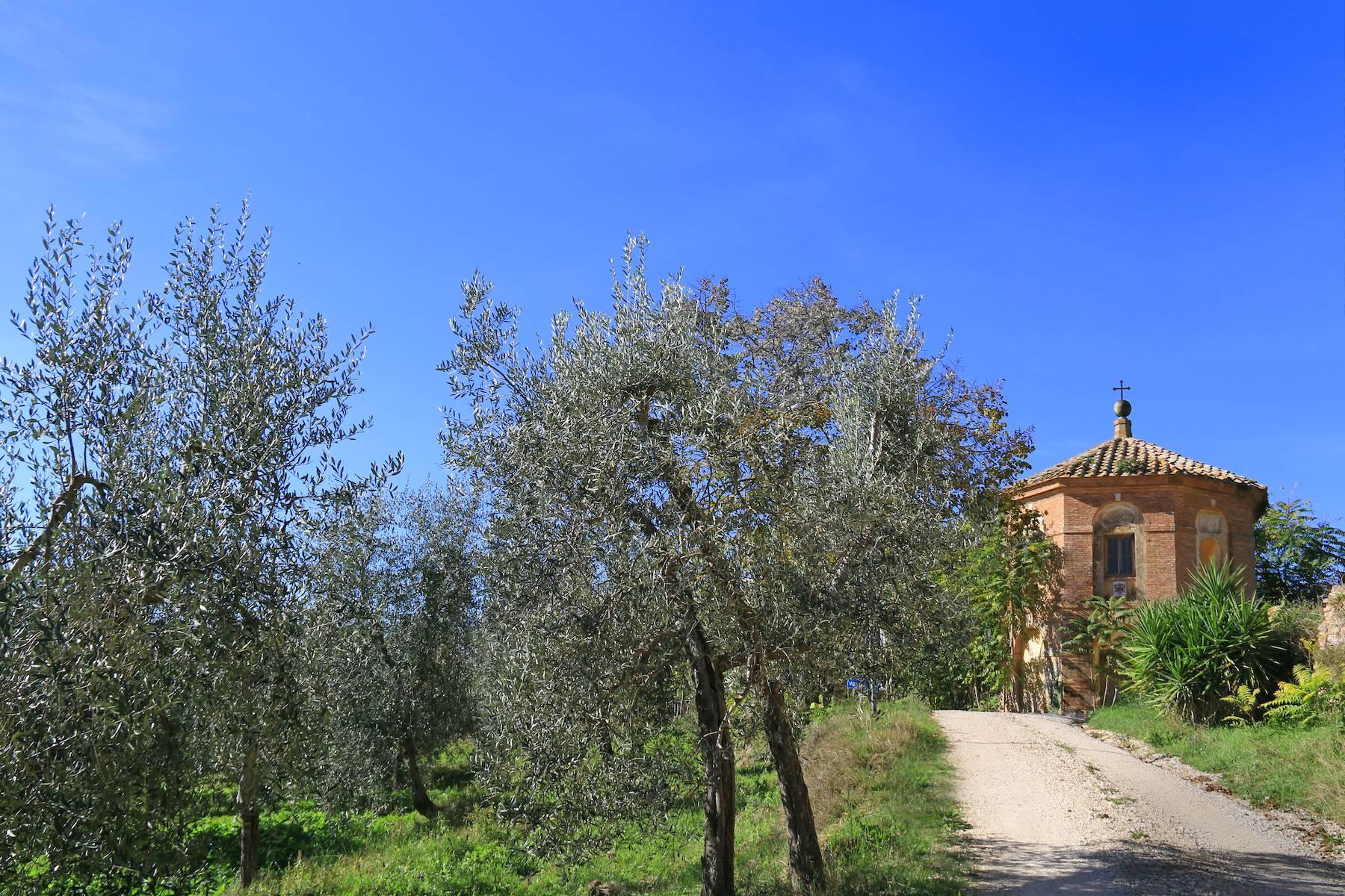 Villa in Vendita a Montalcino: 5 locali, 3800 mq - Foto 8