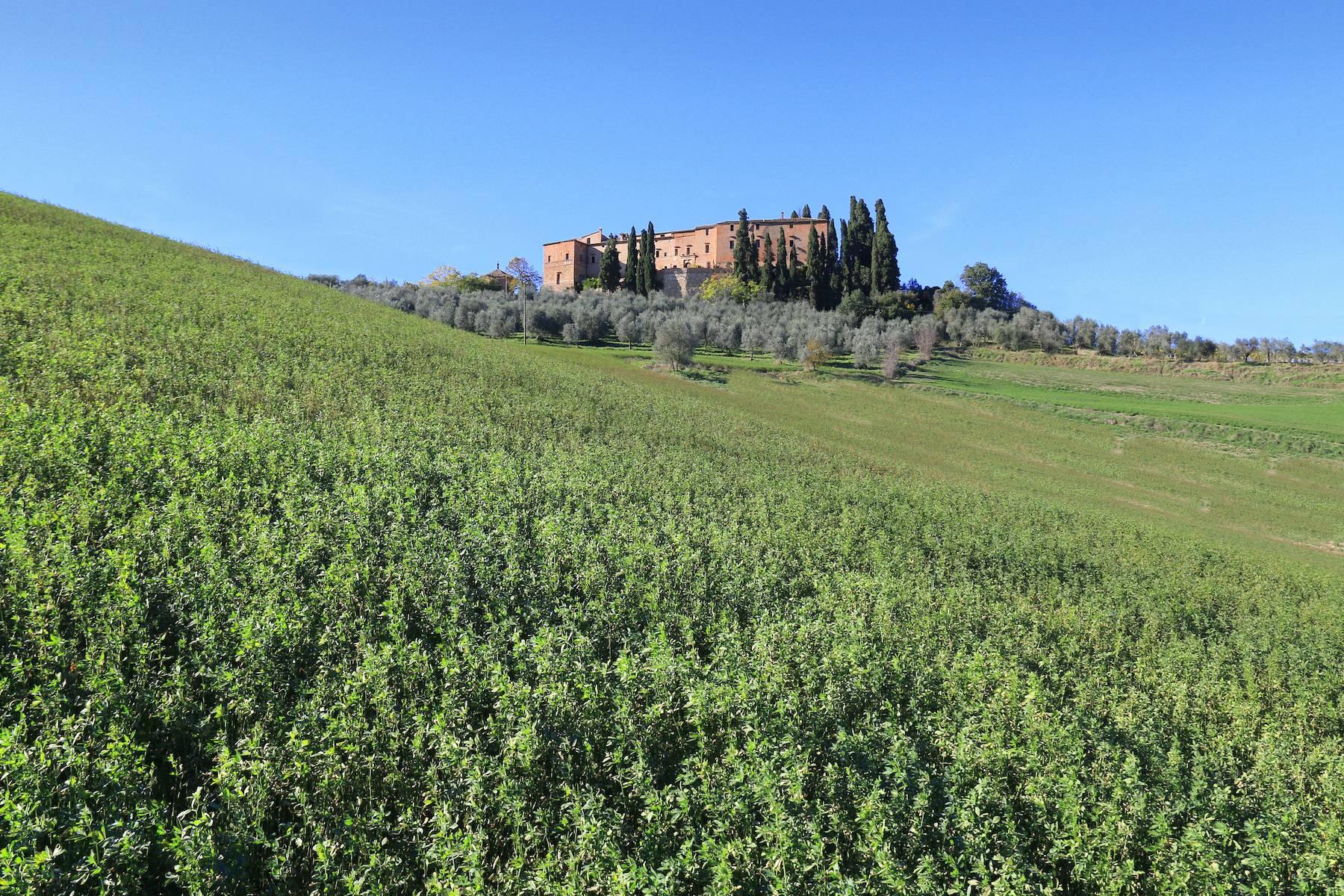Villa in Vendita a Montalcino: 5 locali, 3800 mq - Foto 3