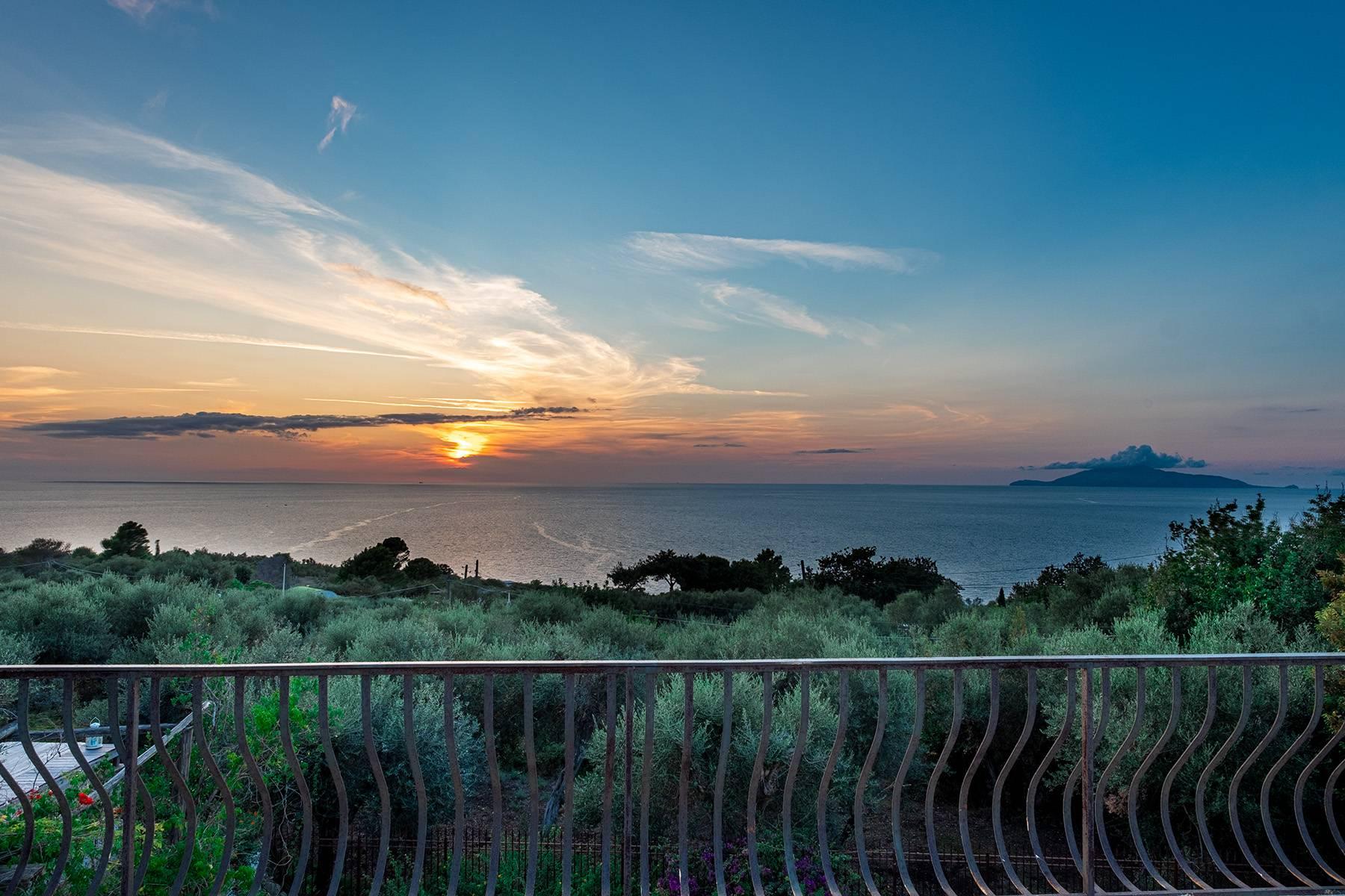 Villa in Vendita a Capri: 5 locali, 200 mq - Foto 25