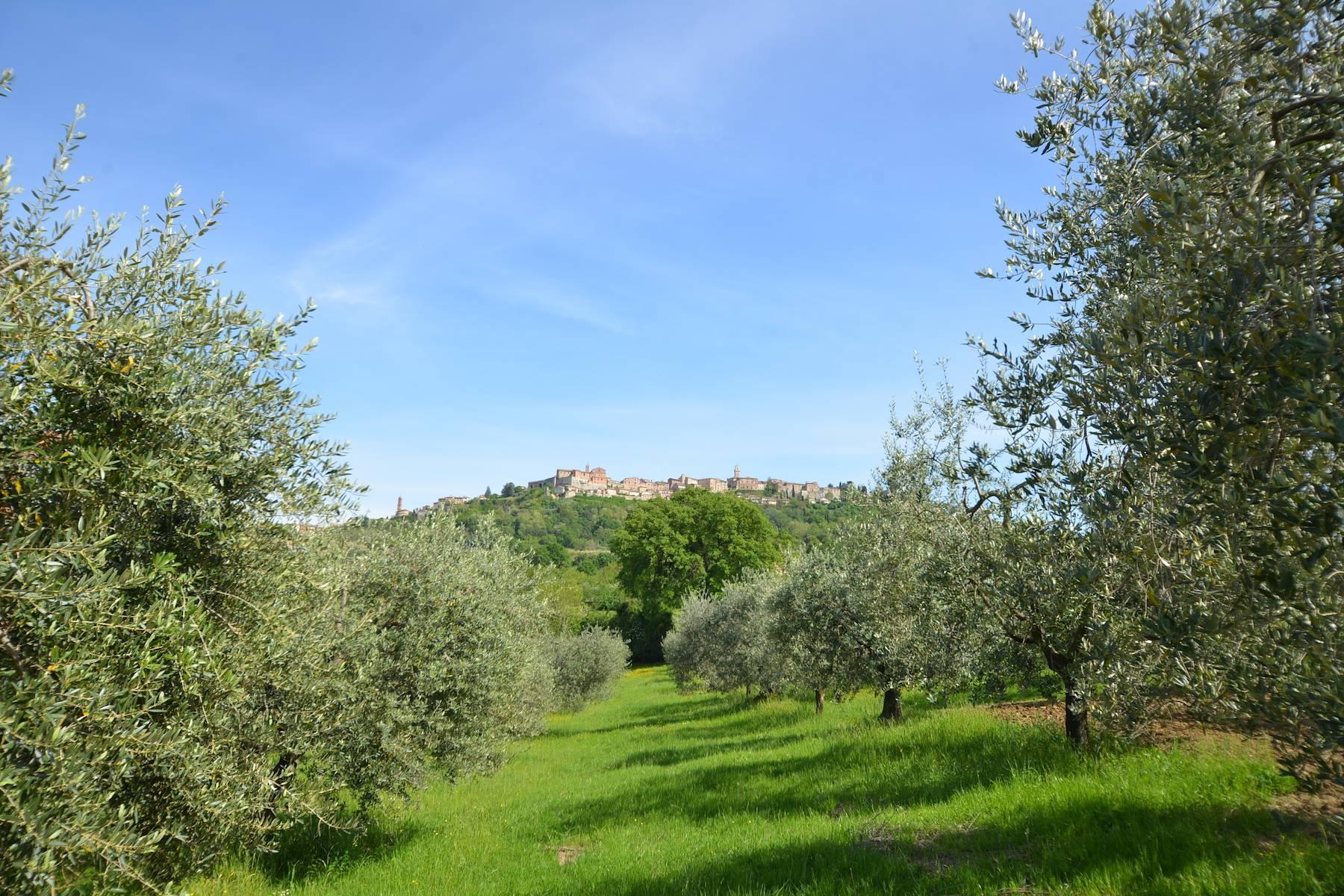 Rustico in Vendita a Montepulciano: 5 locali, 561 mq - Foto 13