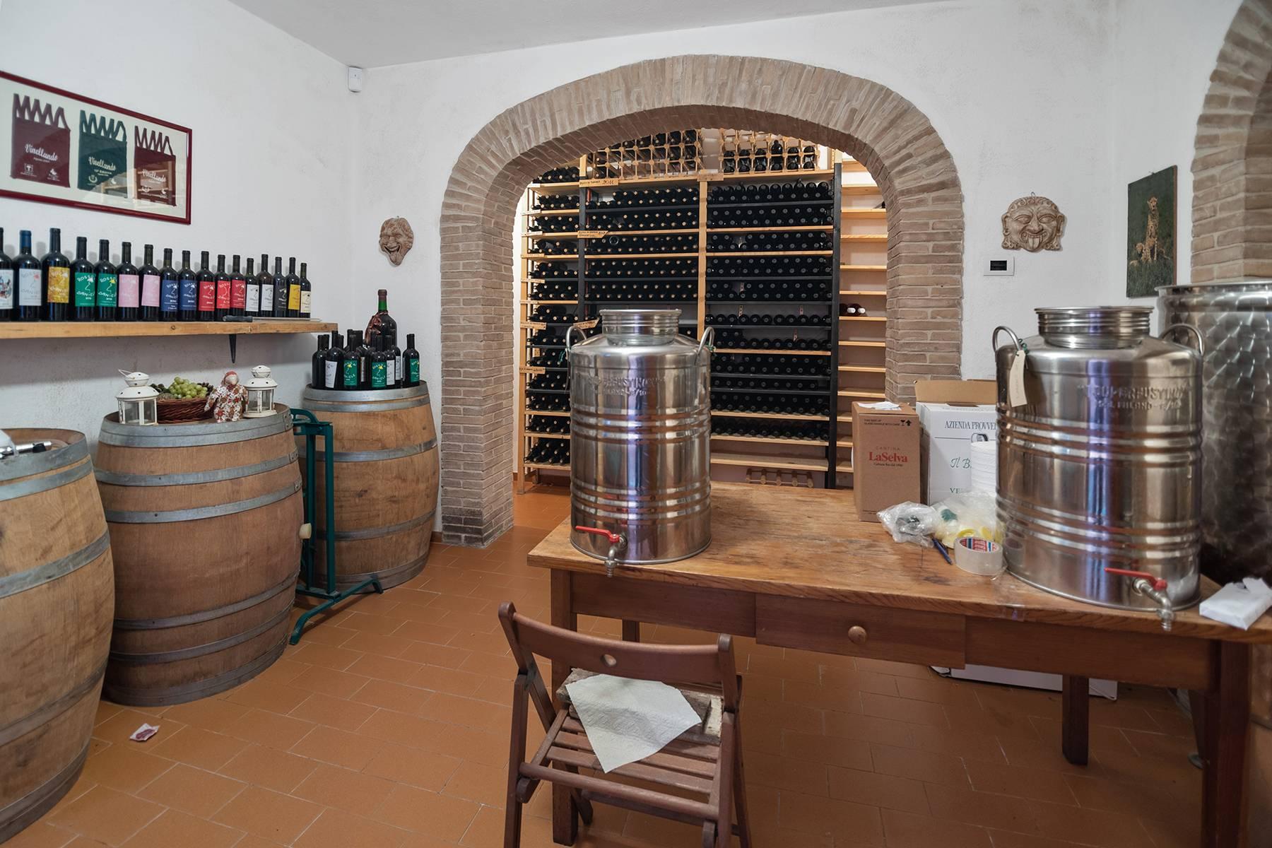 Villa in Vendita a Magliano In Toscana: 5 locali, 378 mq - Foto 23