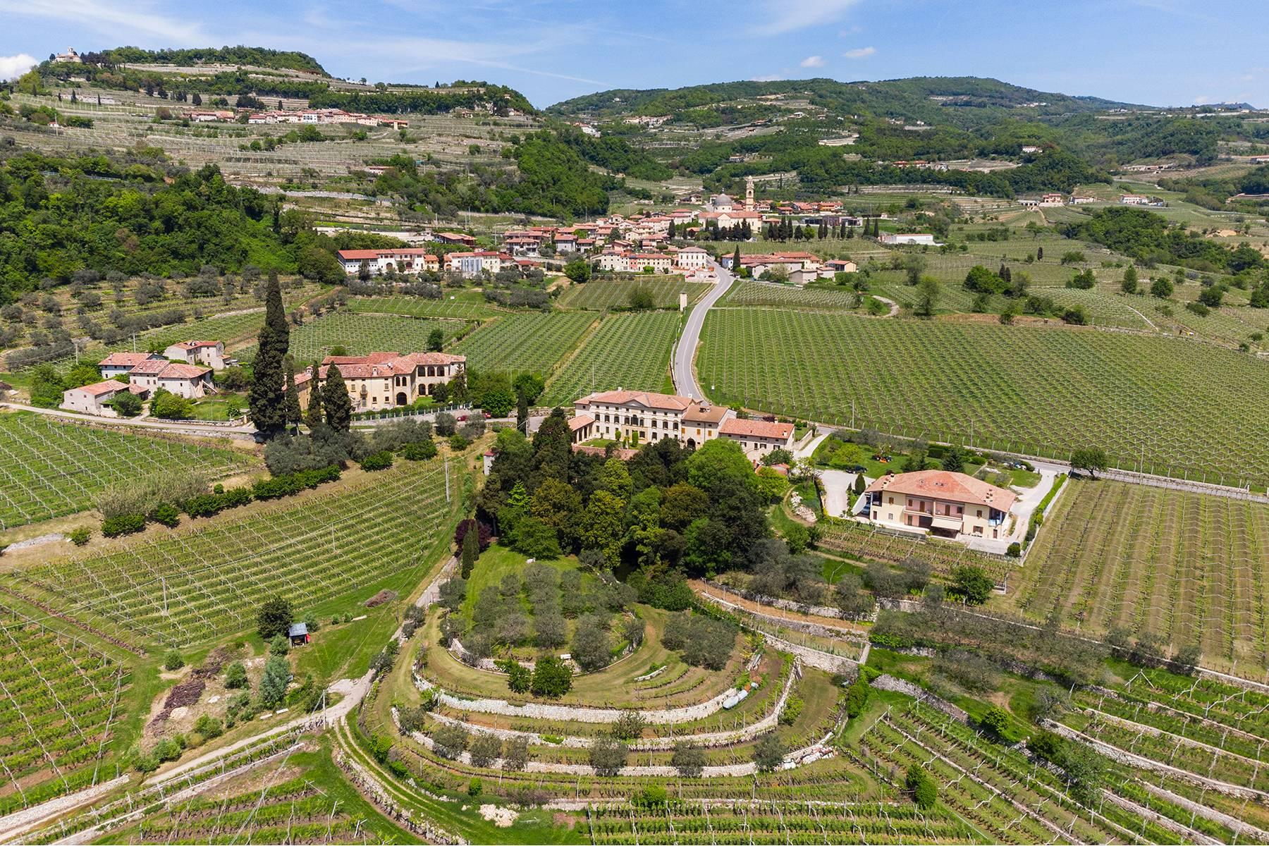 Villa in Vendita a Marano Di Valpolicella: 5 locali, 2000 mq - Foto 3