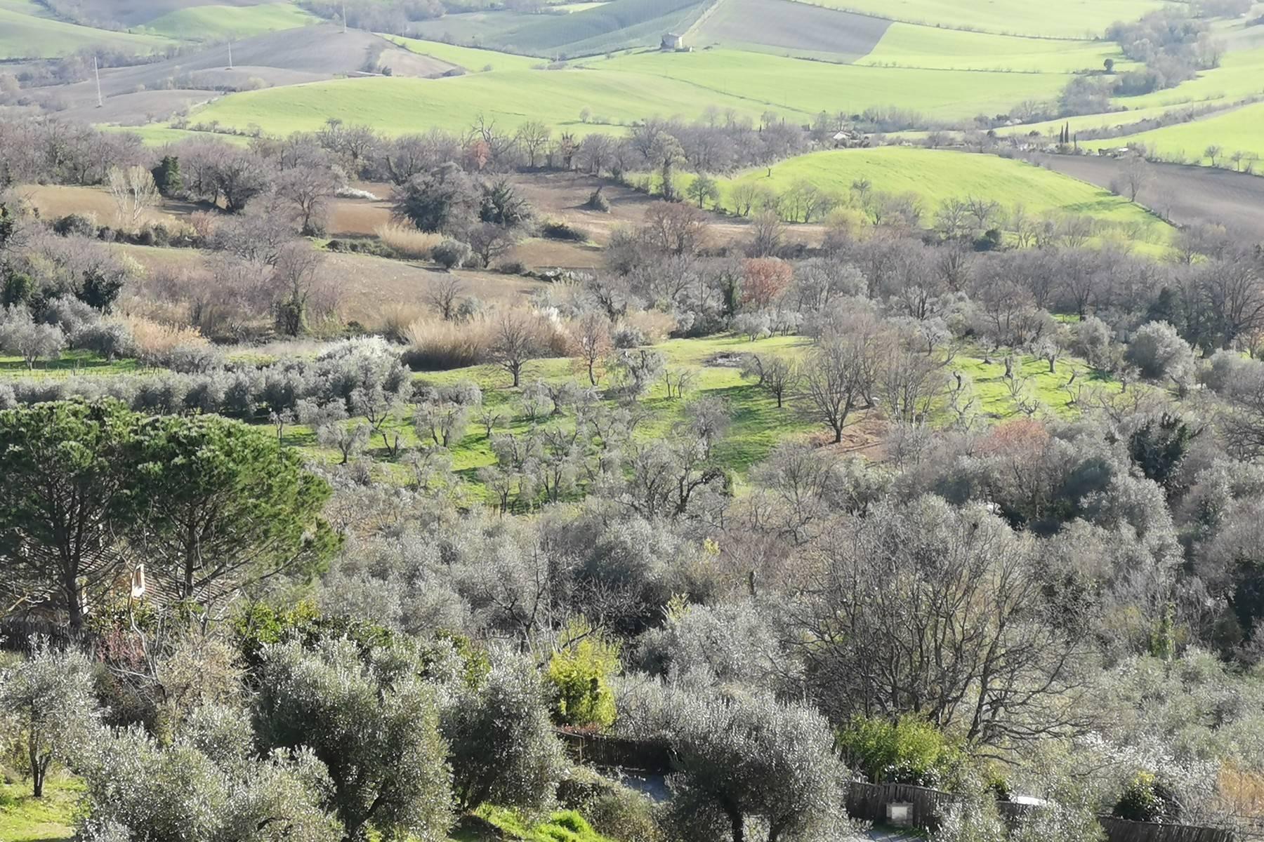 Casa indipendente in Vendita a Manciano: 5 locali, 585 mq - Foto 10